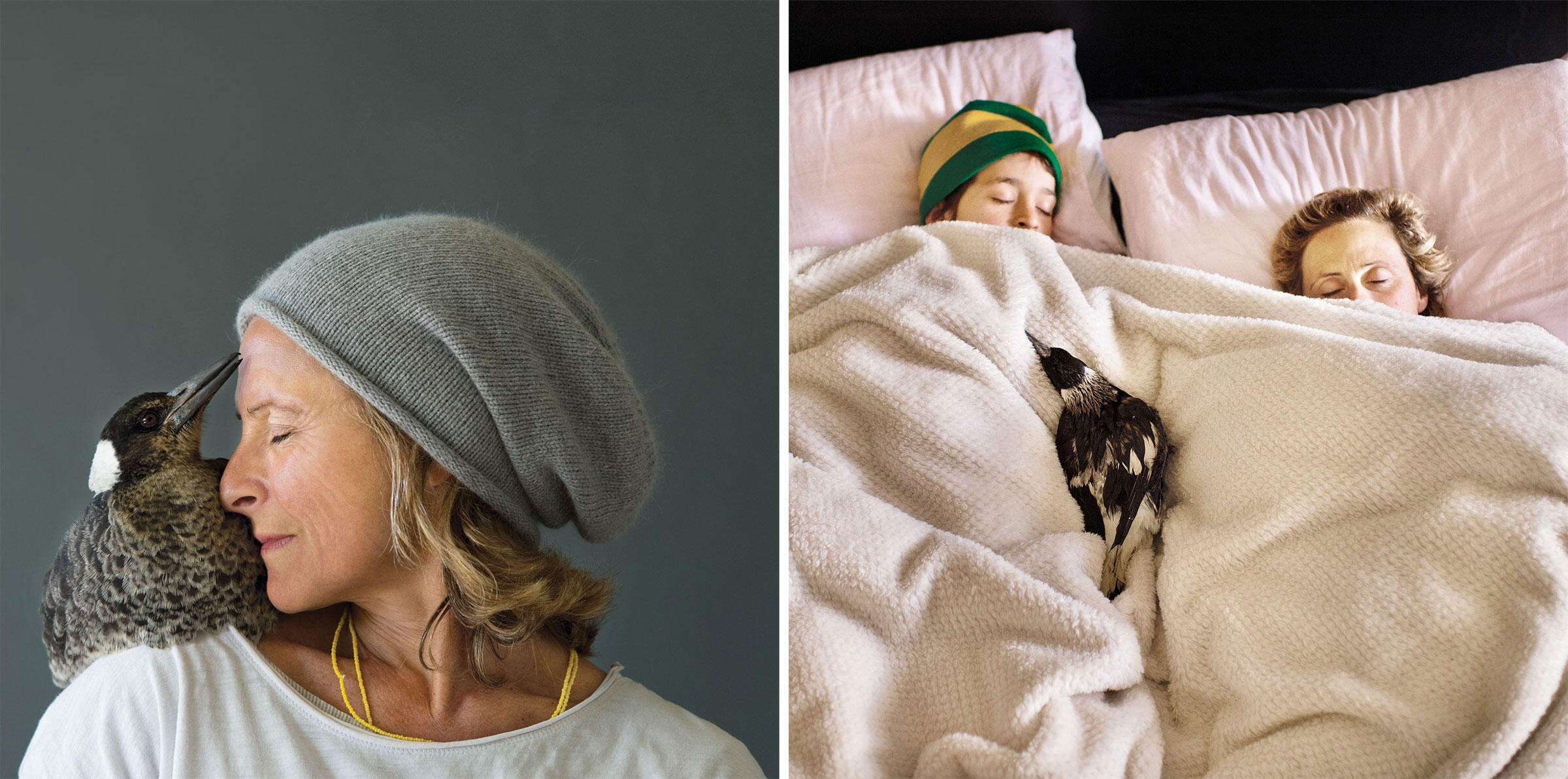 Penguin quickly became the sixth member of our family, and she developed an especially close relationship with Sam (far left). In the early morning she'd often zip into a bedroom, plop onto the covers, and get some extra sleep. Photos: Cameron Bloom