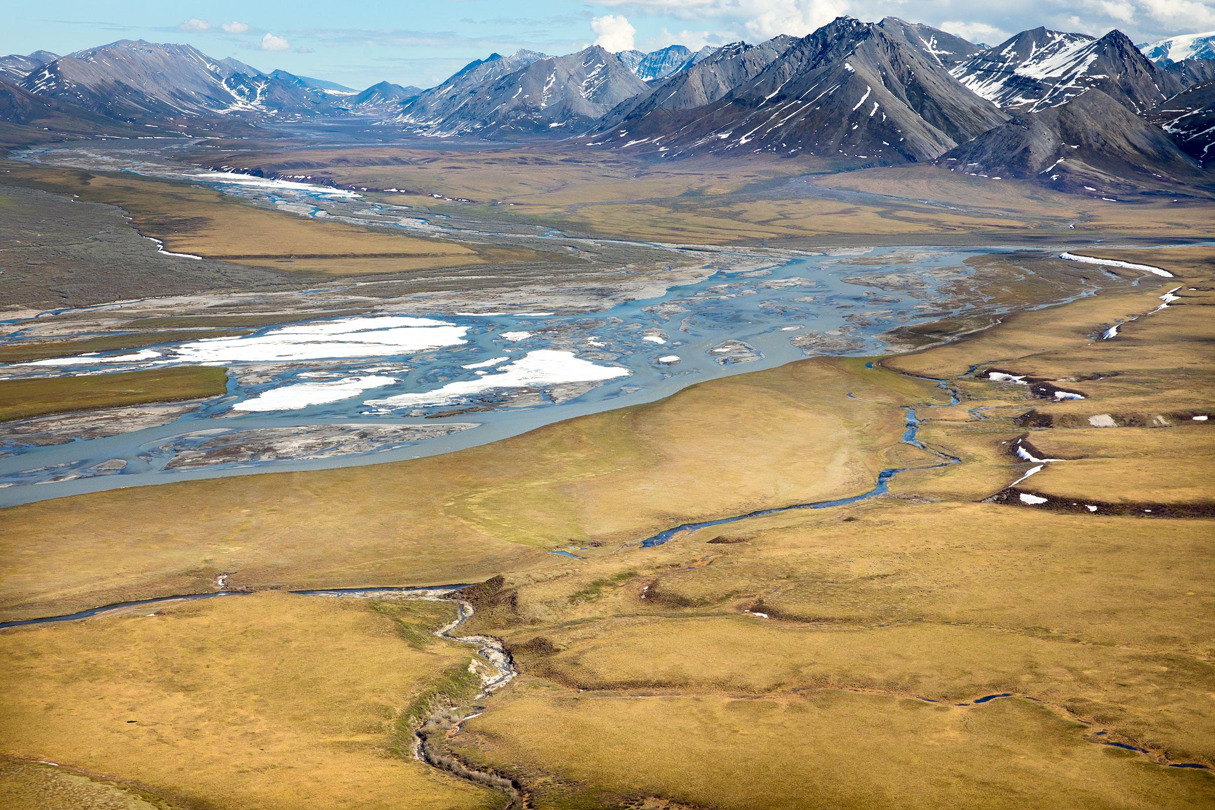 Arctic National Wildlife Refuge coastal plain. Lisa Hupp/USFWS