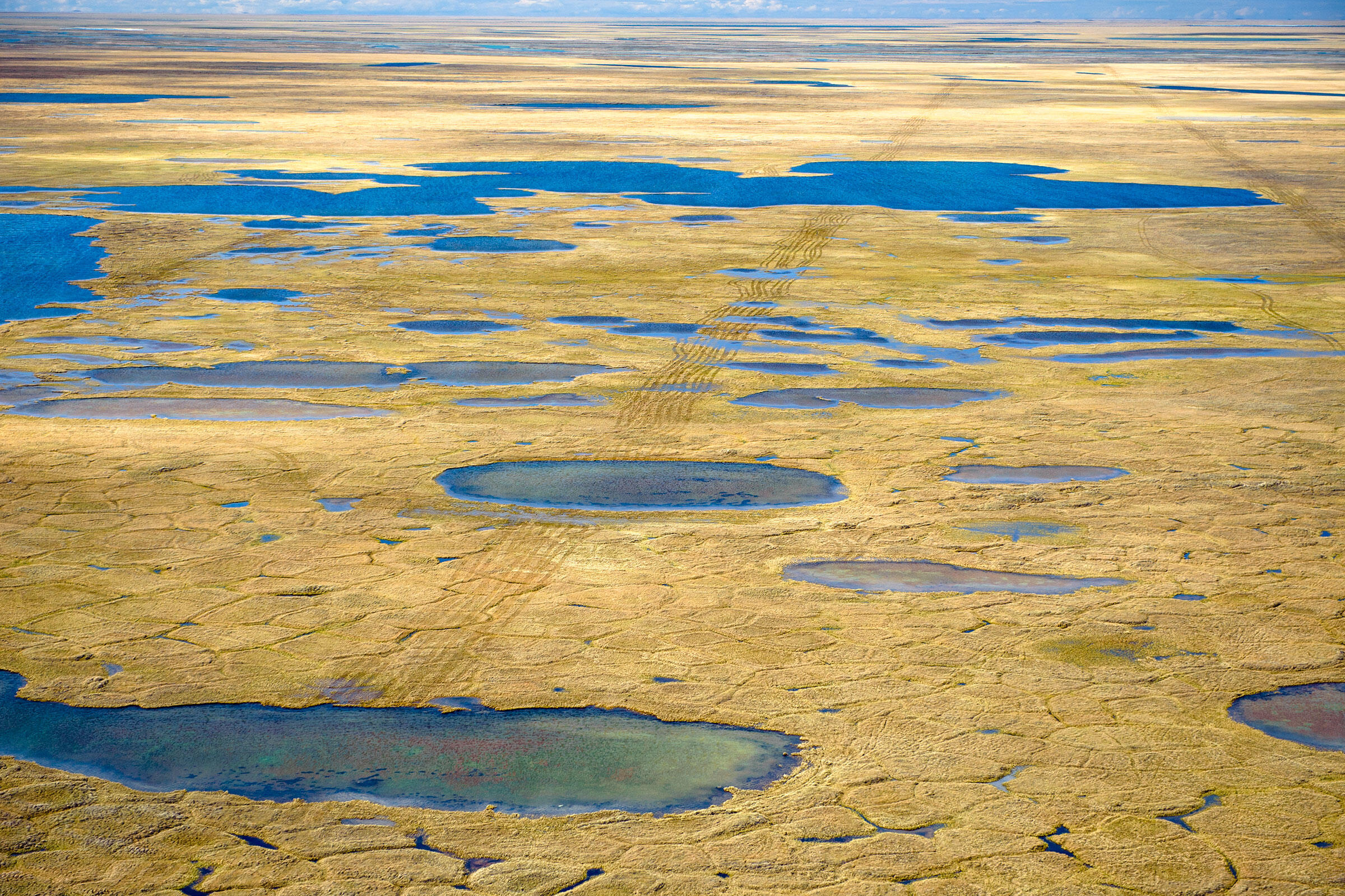 Scars from seismic testing left on the Alaskan tundra west of the Arctic National Wildlife Refuge. Florian Schulz
