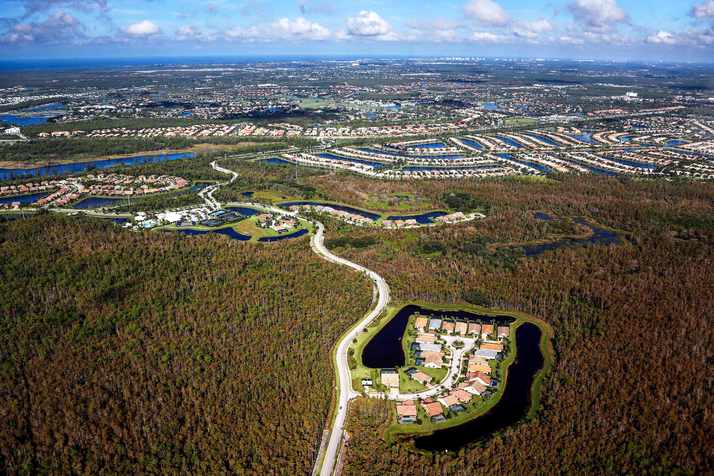 A housing development in the Everglades, Florida. Robert F. Bukaty/AP