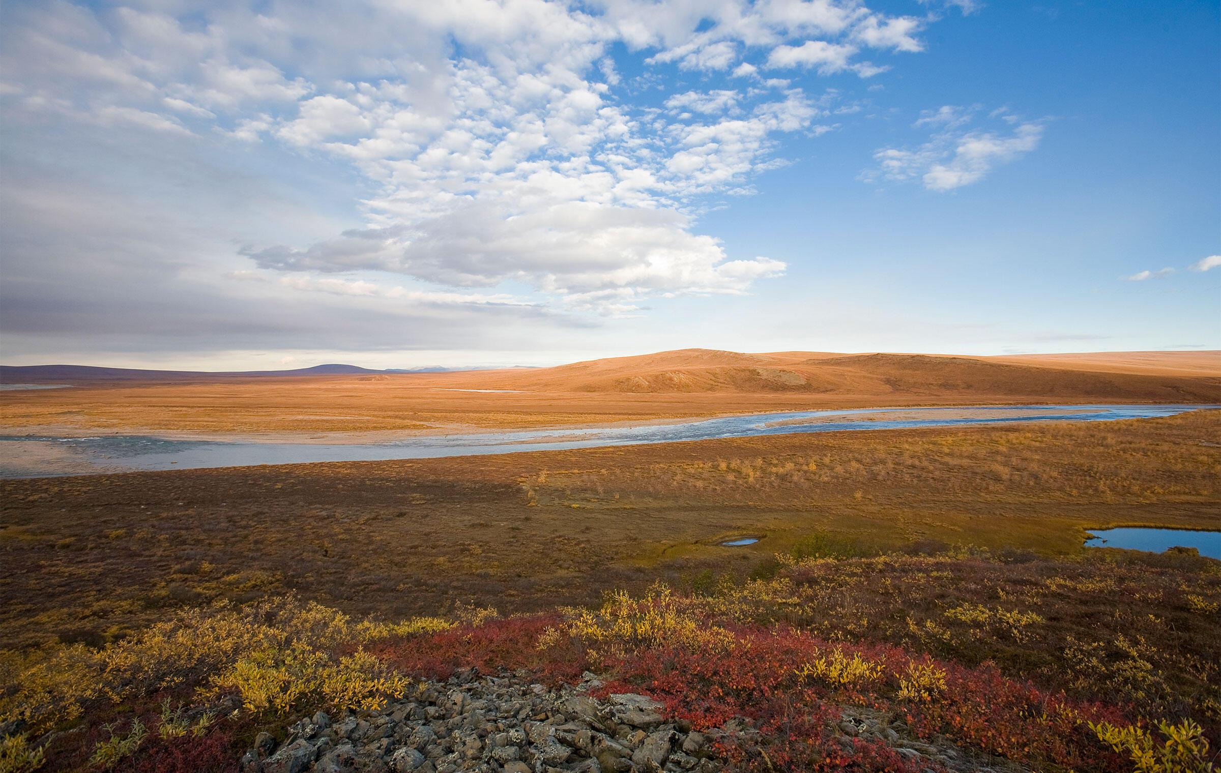 Coastal plain in the Arctic National Wildlife Refuge during autumn. Accent Alaska/Alamy