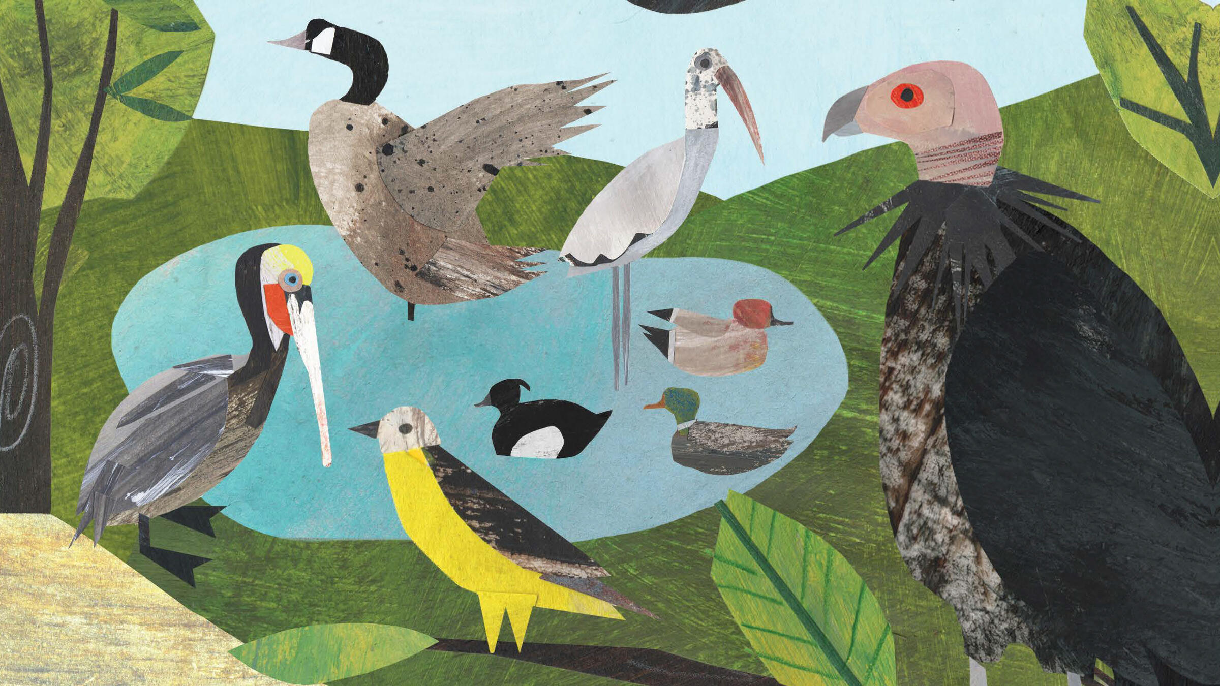 Spread from the book Counting Birds by Heidi E.Y. Stemple. Illustrated: Clover Robin