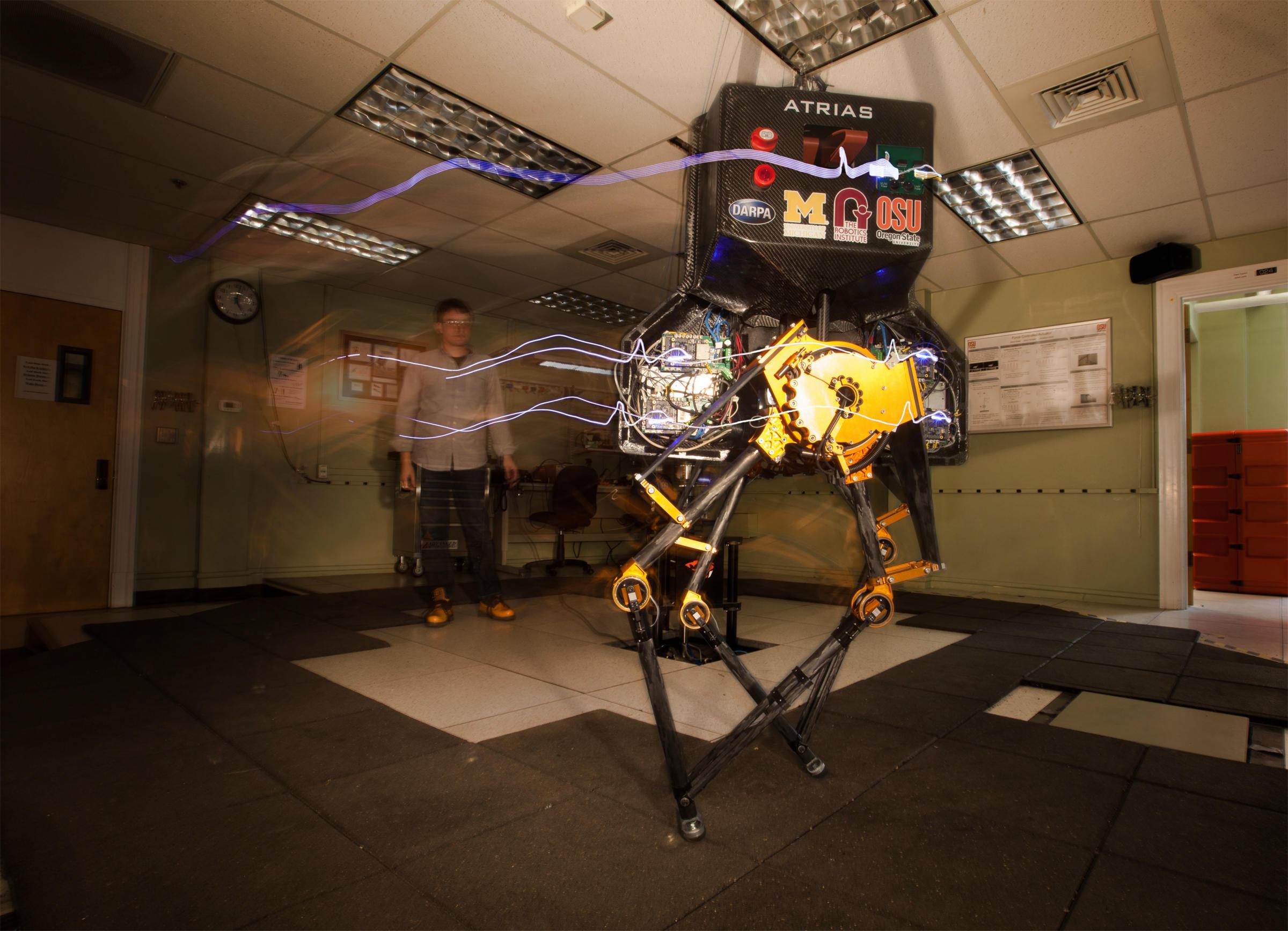 The ATRIAS bipedal robot takes a lap around the Dynamic Robotics Laboratory. Dynamic Robotics Laboratory/Oregon State University