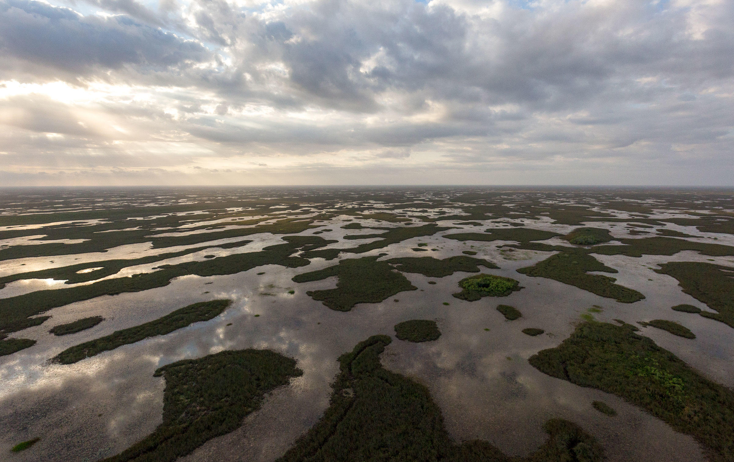 The proposal could cut protections for Everglades wetlands that, while often dry, are essential for wading birds. Mac Stone