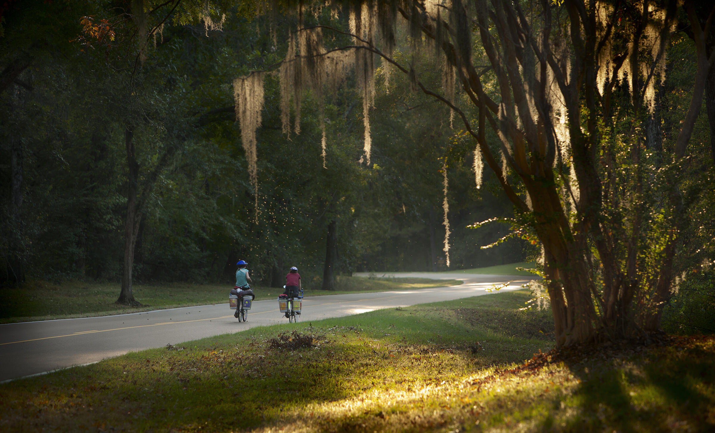 Mile 10, Natchez Trace National Parkway, Mississippi. Marc Muench/Tandemstock.com