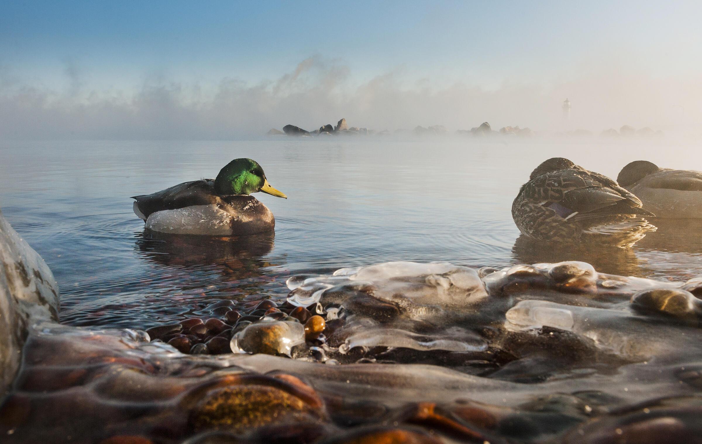 Canal Park, Duluth, MN. Alex Messenger/Tandemstock.com