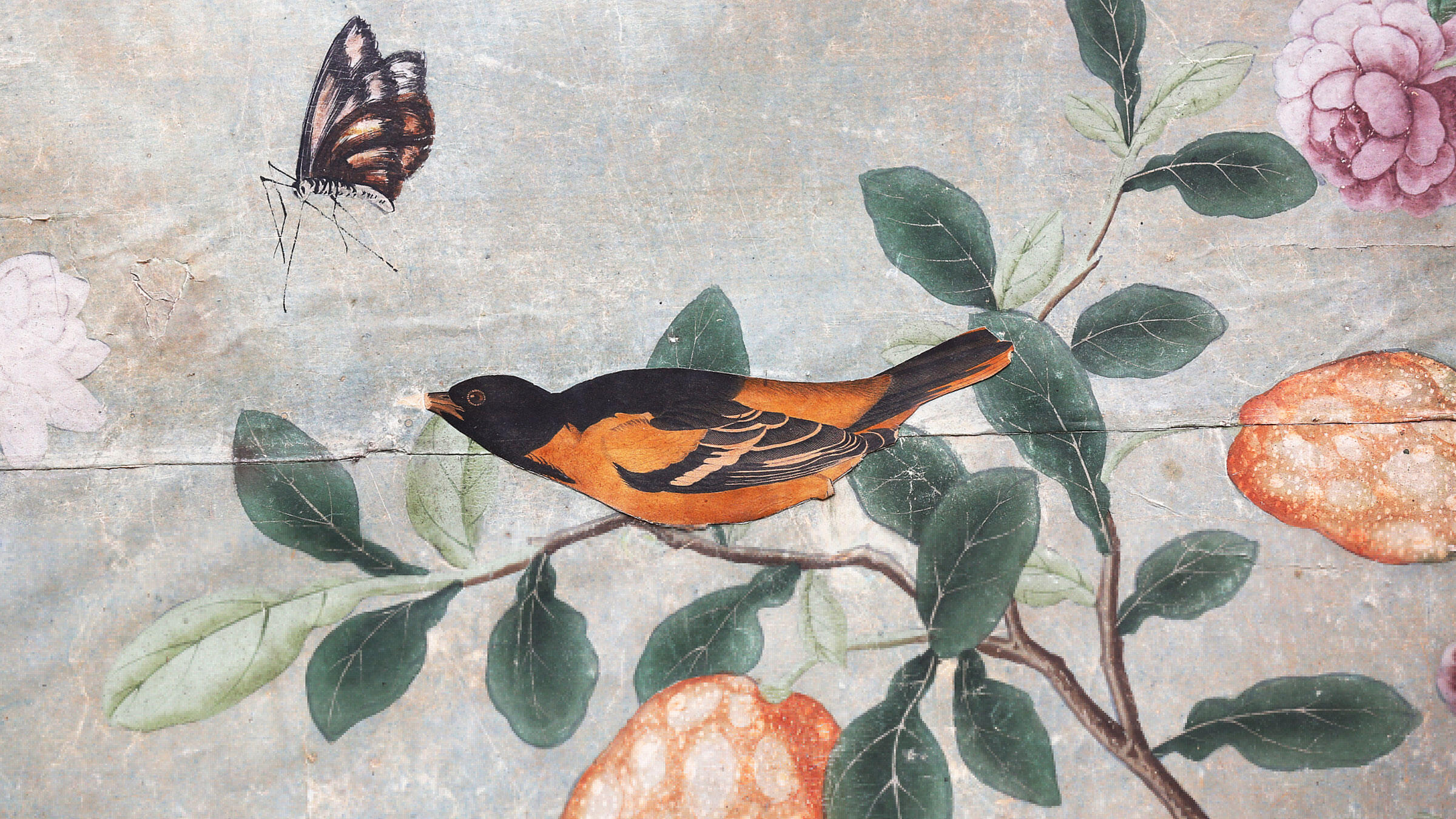 John James Audubon's Baltimore Oriole painting—pasted onto the wallpaper in the Temple Newsam drawing room. Tom McGourty/Ross Parry