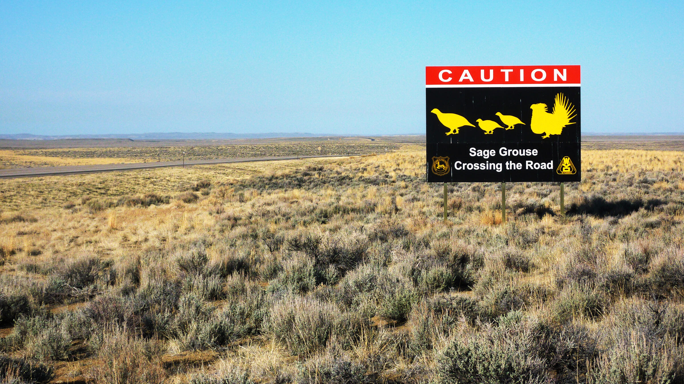 This one-of-a-kind sign alerts drivers on Wyoming's Highway 28 that a very important bird may be nearby. Mark Bellis/USFWS