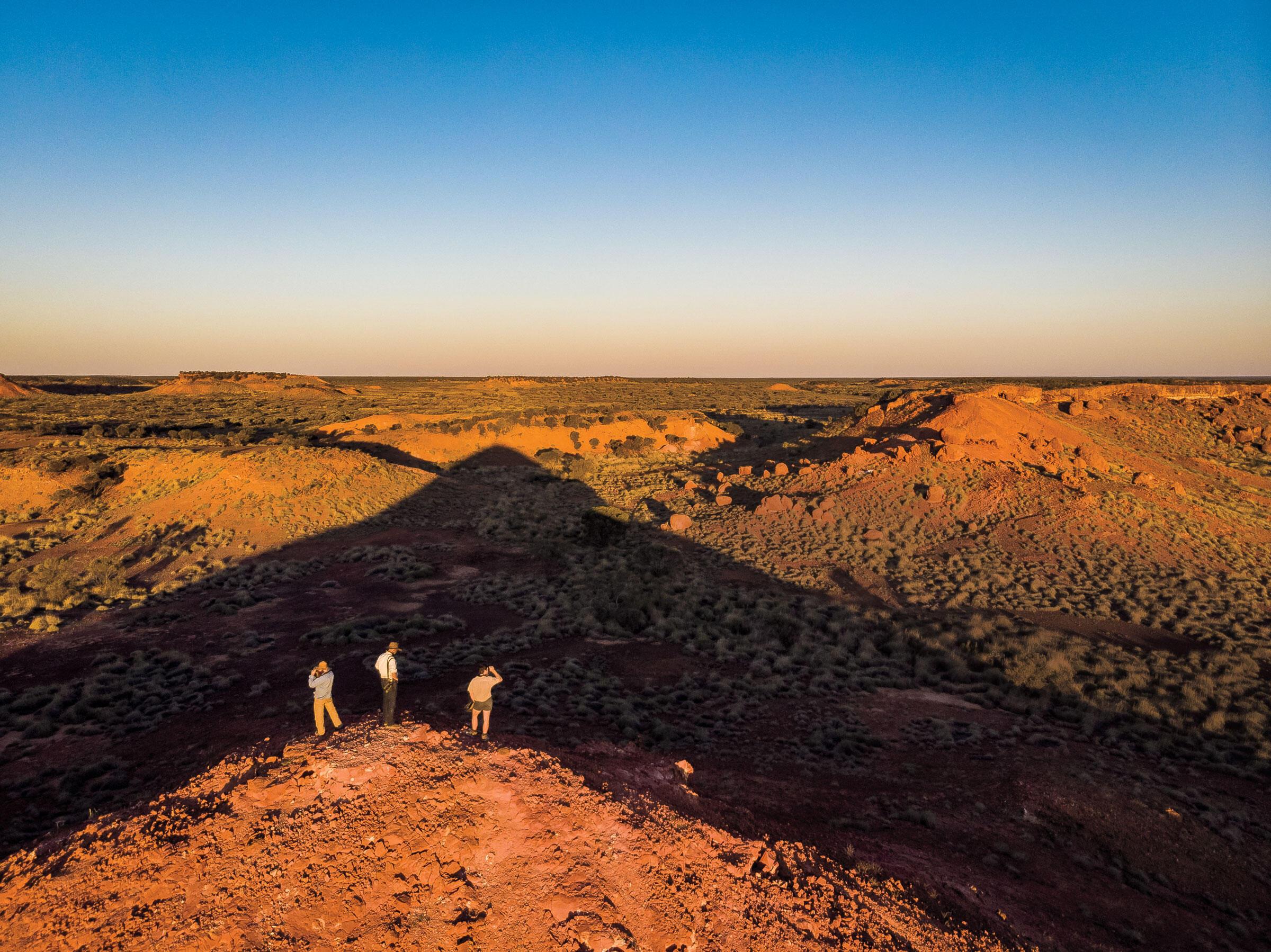 El Perico Nocturno, uno de únicos dos pericos de hábitos nocturnos del mundo, ha resistido en esta región remota y desolada del interior de Queensland.
