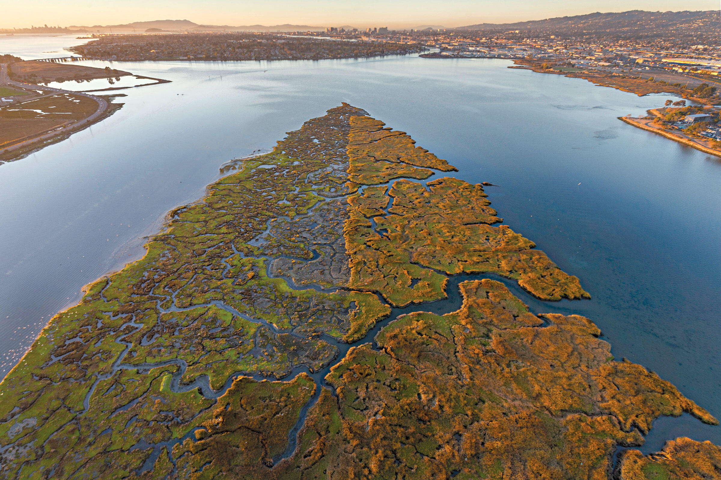 Oakland's Arrowhead Marsh, a mere two miles from the Coliseum stadium complex, is already undergoing restoration to fight sea-level rise. Peter Essick/Aurora