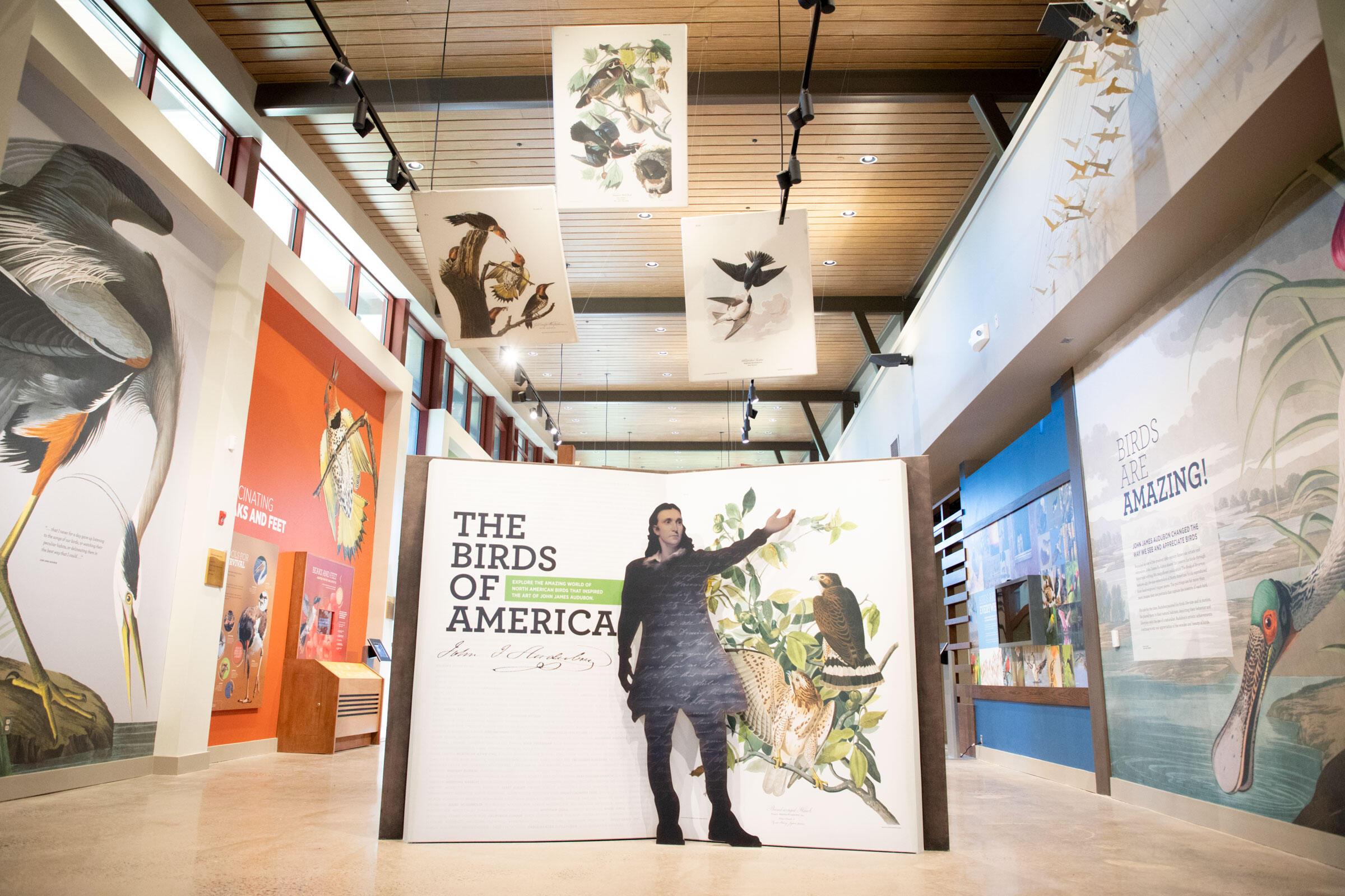 The entrance to the main exhibit hall of the new museum at the John James Audubon Center at Mill Grove on Tuesday, June 4, 2019 in Audubon, Pennsylvania. Luke Franke/Audubon