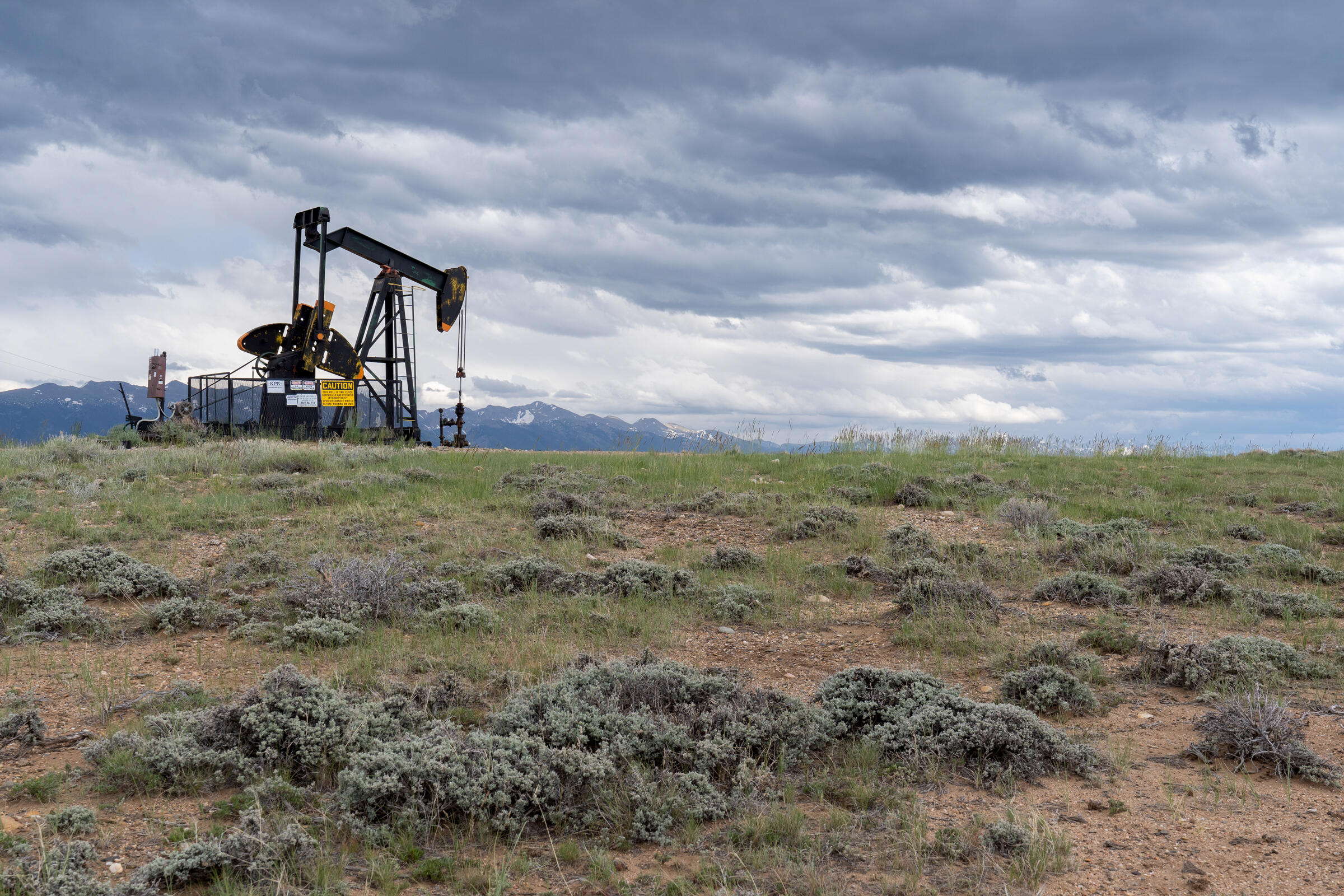 Courts have voided leases and otherwise impeded the administration's efforts to lift restrictions on energy development within Greater Sage-Grouse habitat. Evan Barrientos/Audubon