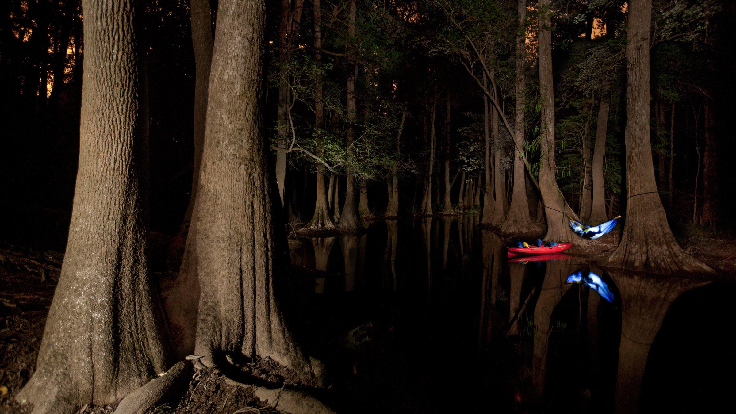 A makeshift hammock on Cedar Creek in Congaree National Park, South Carolina. Mac Stone