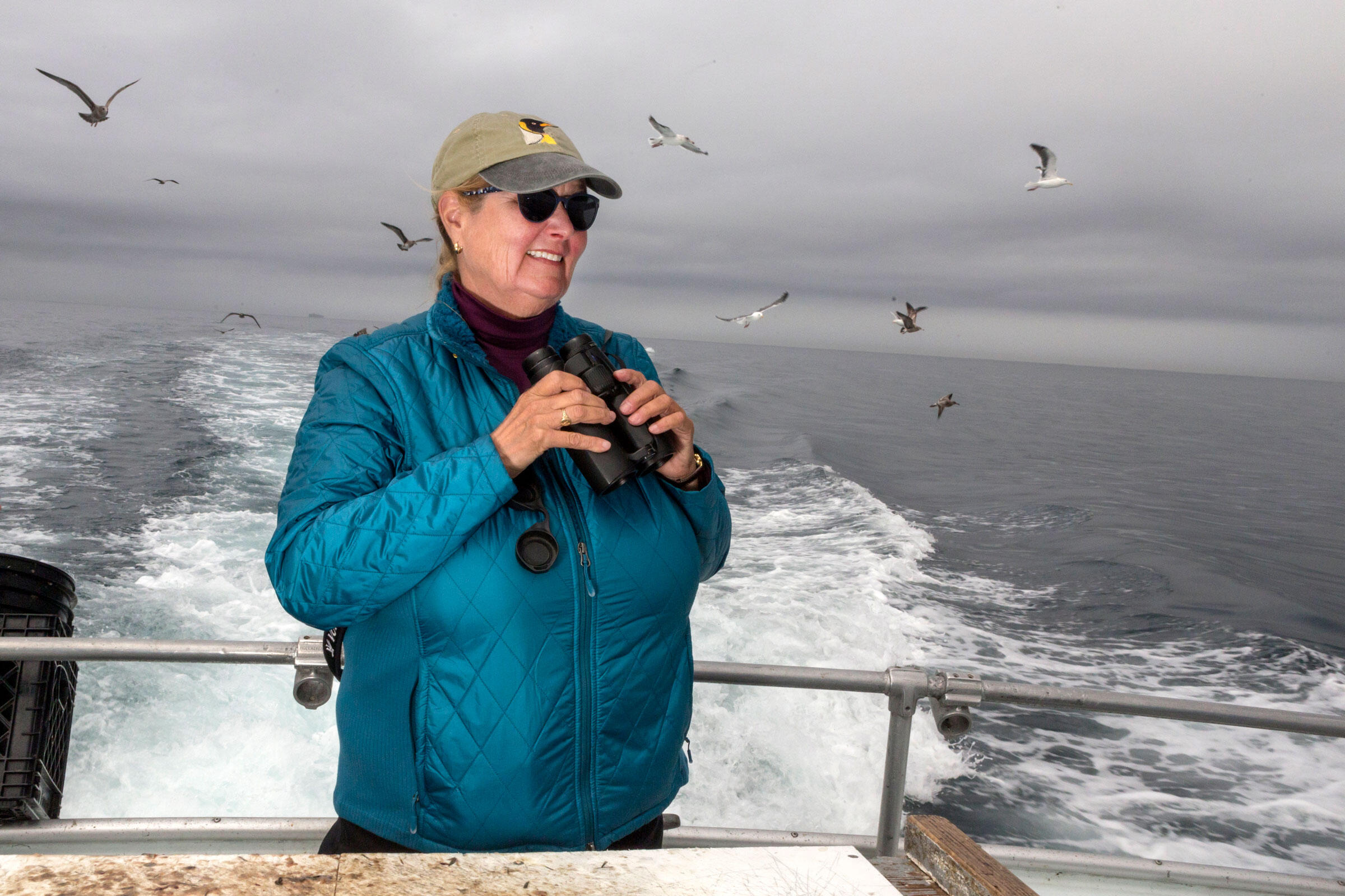 On one of Debi's first trips, the target was a Laysan Albatross. They had no luck—until she stopped to watch sperm whales. Then the rare bird appeared. Lauren Owens Lambert