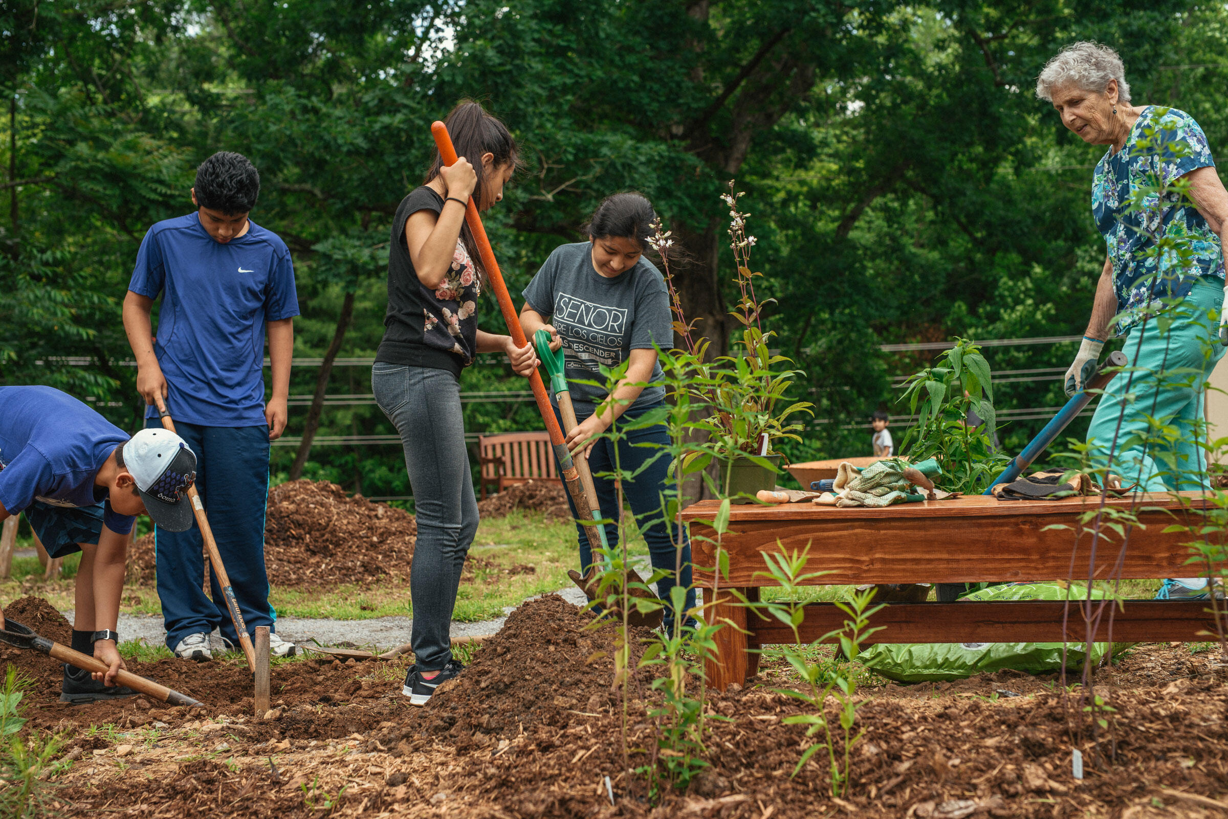 """Volunteers from St. Eugene Catholic Church plant native plants in the Friendship Garden, or """"Jardin de la Amistad"""" on a June afternoon. Mike Belleme"""