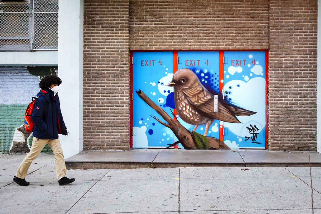Fox Sparrow by ESPY. Mike Fernandez/Audubon