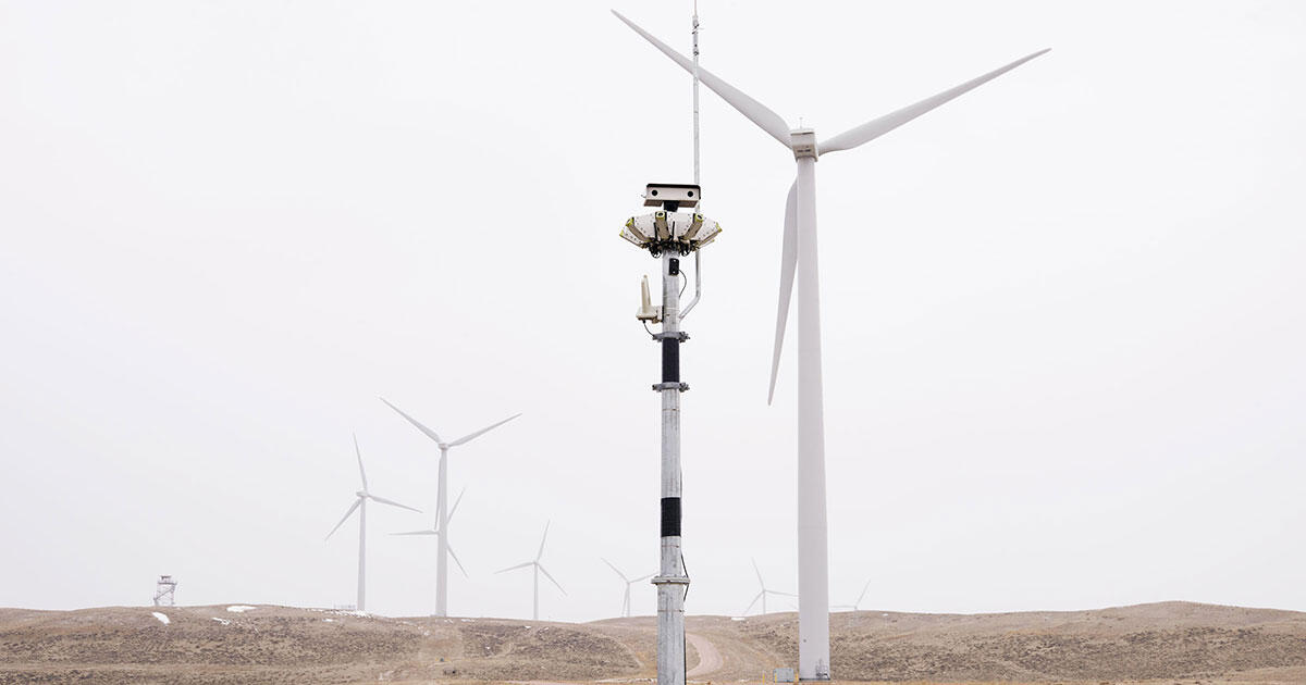 How New Technology Is Making Wind Farms Safer For Birds Audubon
