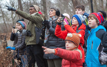 Join the Christmas Bird Count