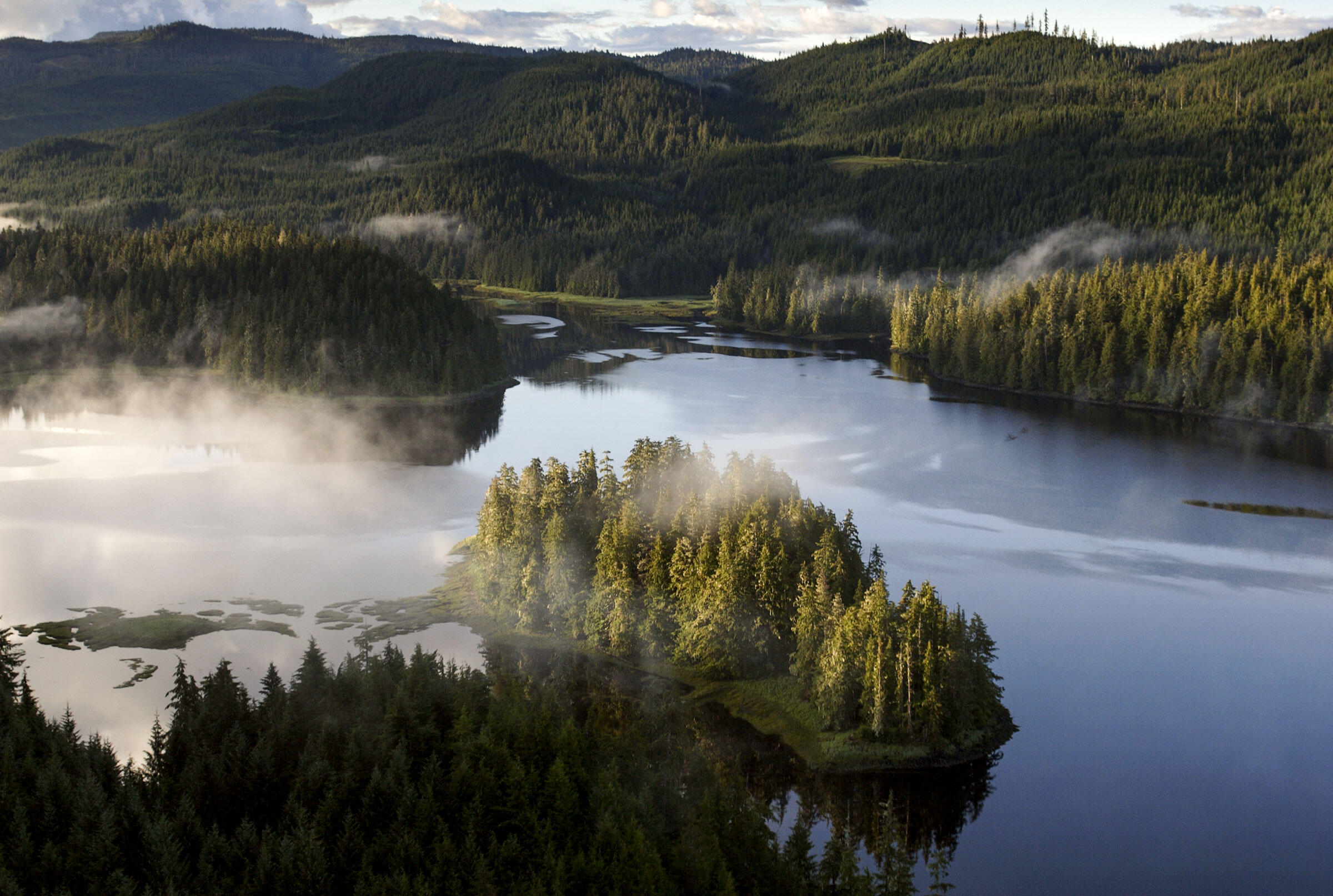 Tongass National Forest. Melissa Farlow/National Geographic Creative