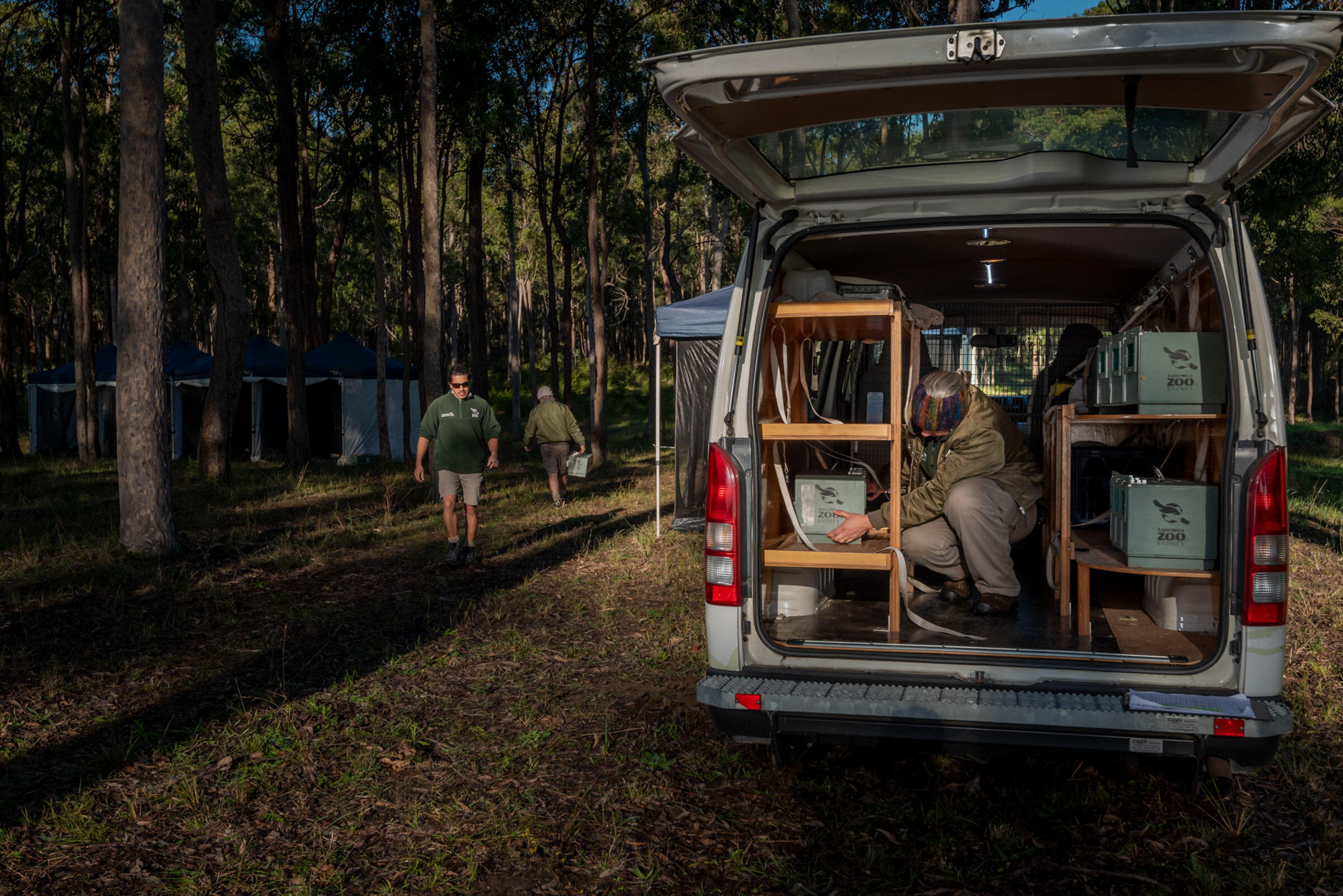 Keepers transport captive-bred Regent Honeyeaters from Taronga Zoo in Sydney to their release destination at Quorrobolong. Doug Gimesy
