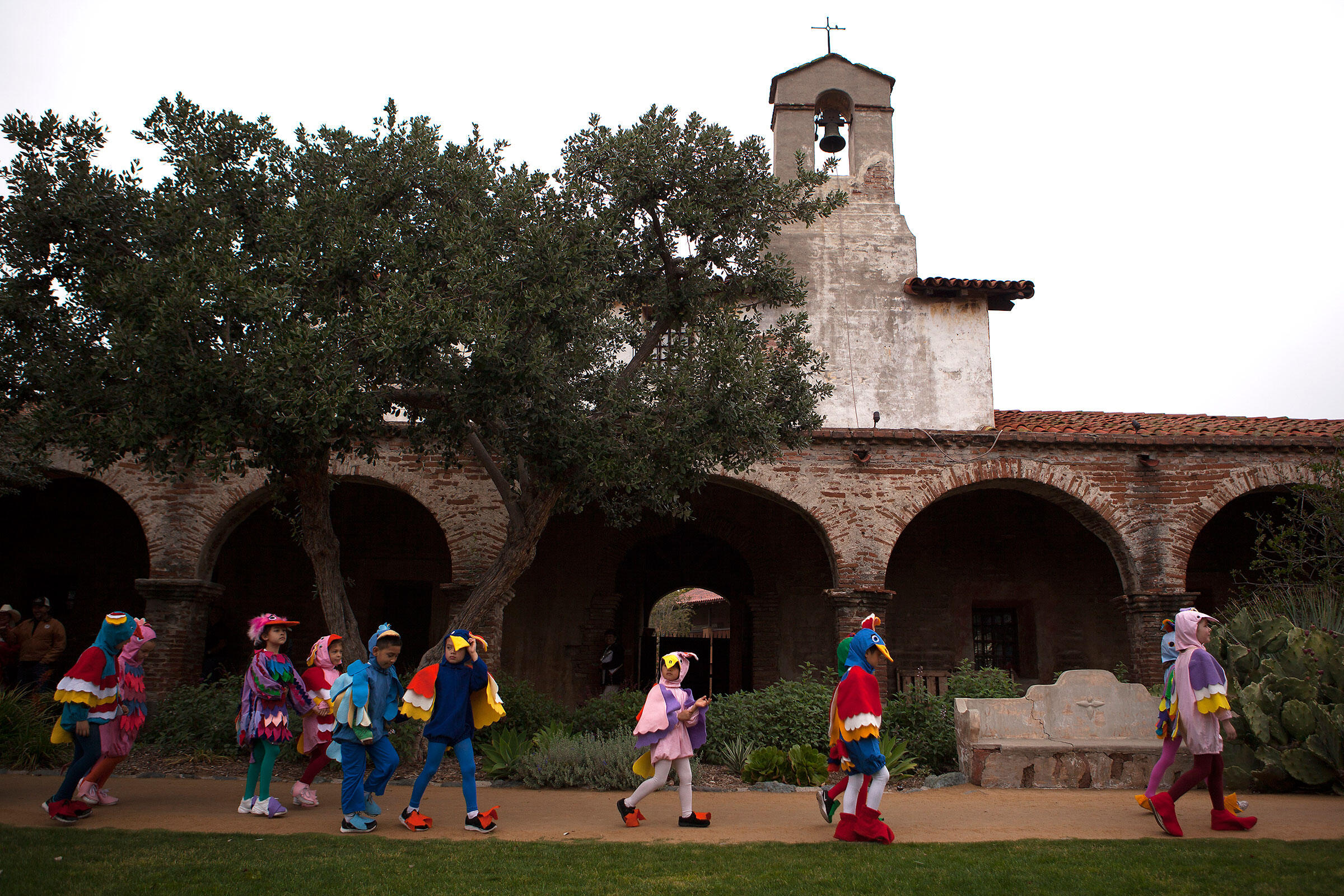 Students from the Mission Basilica School dress in fanciful bird costumes and perform a traditional song and dance during the festival. Troy Harvey