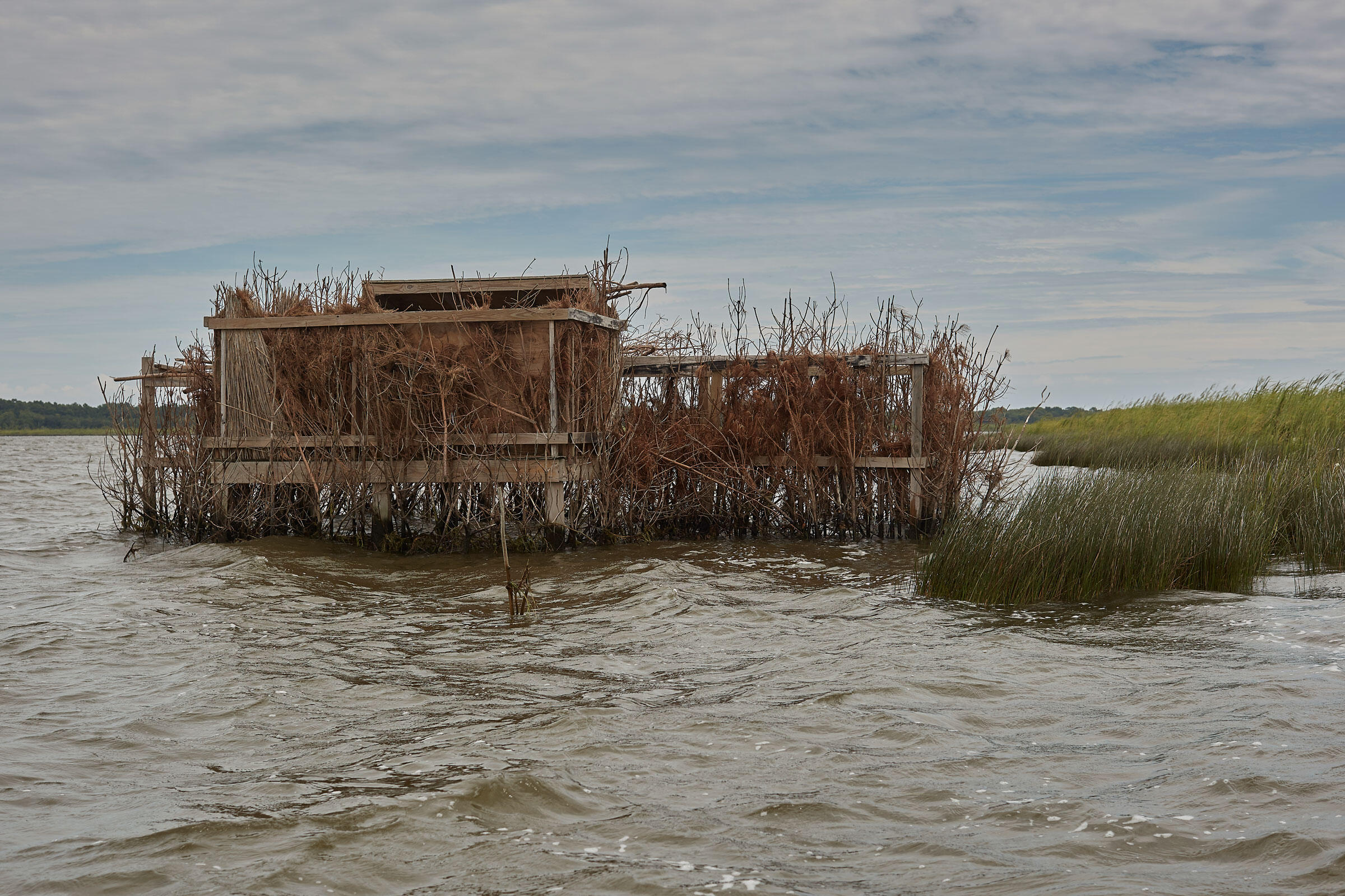 Los refugios para cazadores en Pine Island, aun usados para cazas cuidadosamente manejadas, recuerdan los días cuando cuentos de miles de anseriformes usaban el Currituck Sound en otoño e invierno.