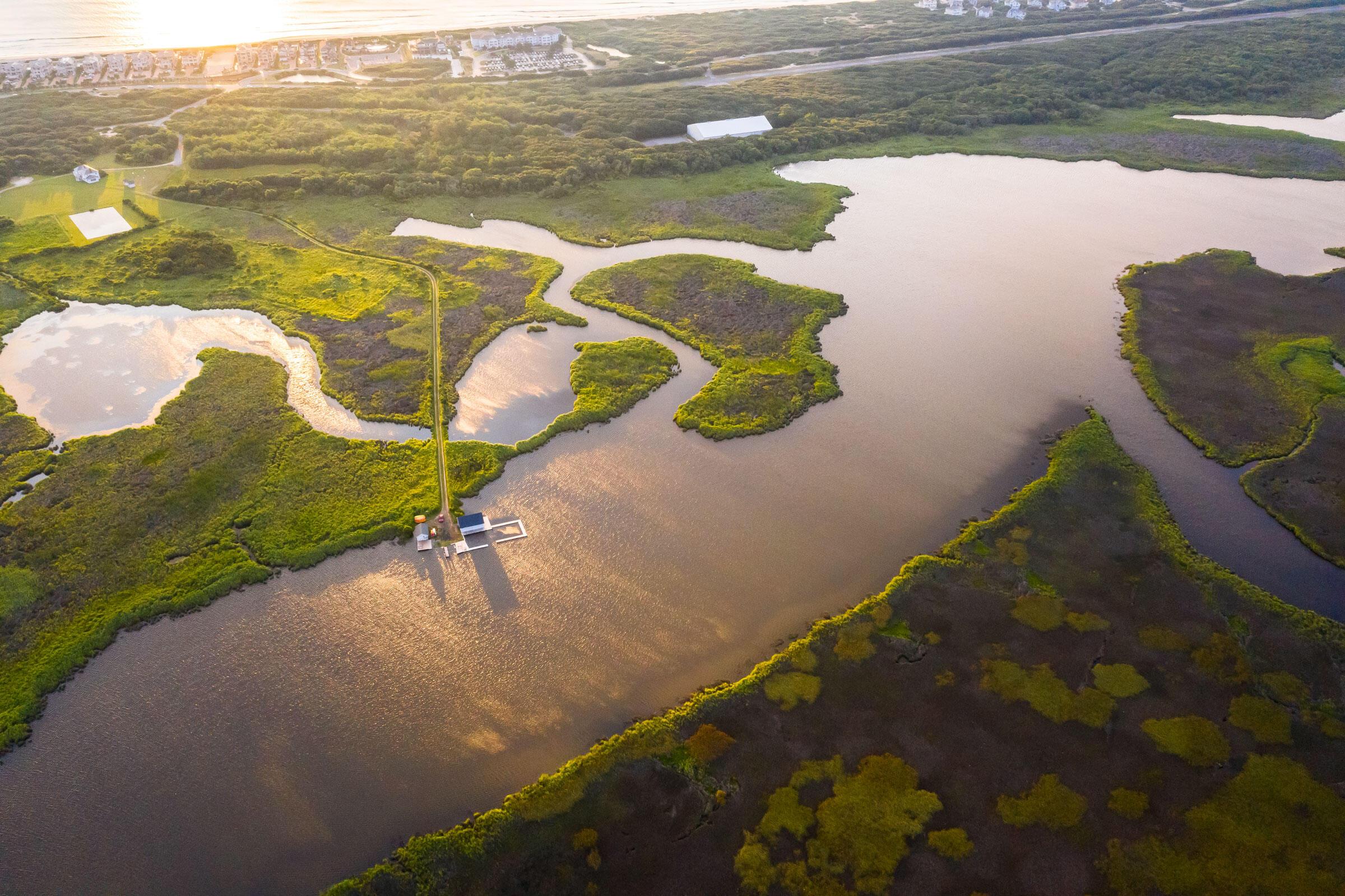 Los pantanos de Pine Island la convierten en el lugar ideal para probar defensas naturales contra el crecimiento del nivel del mar.