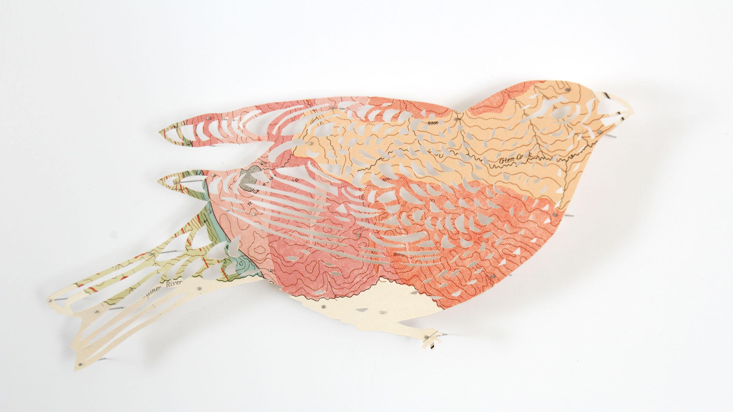 Pine Grosbeak. Paper sculpture: Claire Brewster