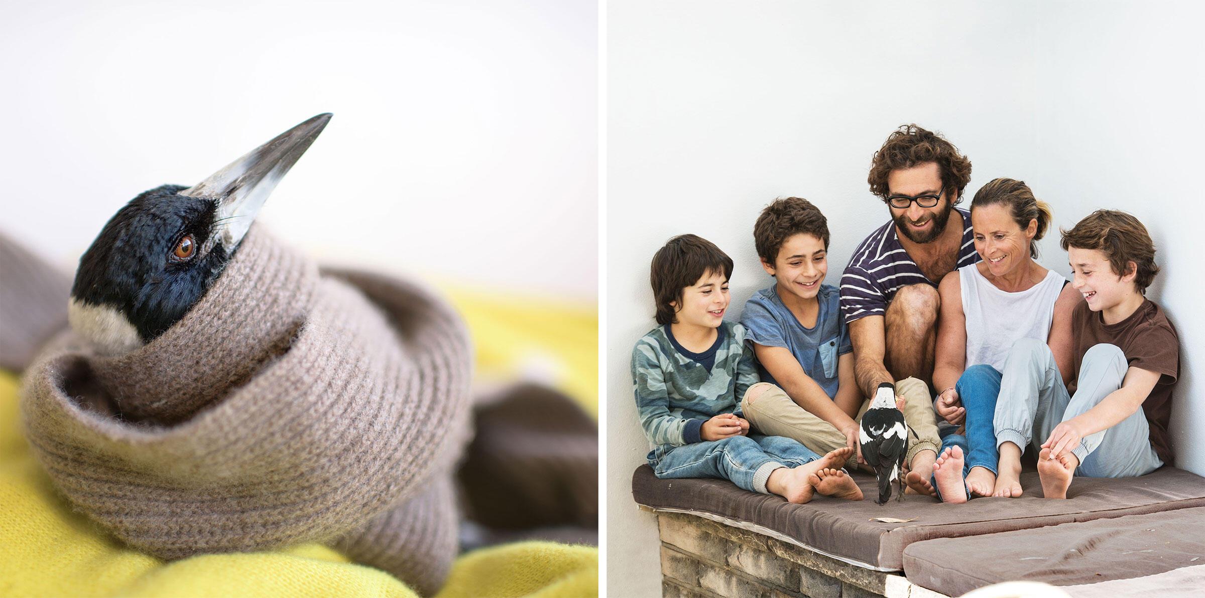 Penguin disfruta ser el centro de atención entre nosotros cinco, su familia adoptiva (desde la izquierda): Oli, Rueben, Cameron, Sam, y Noah. Fotografías: Cameron Bloom