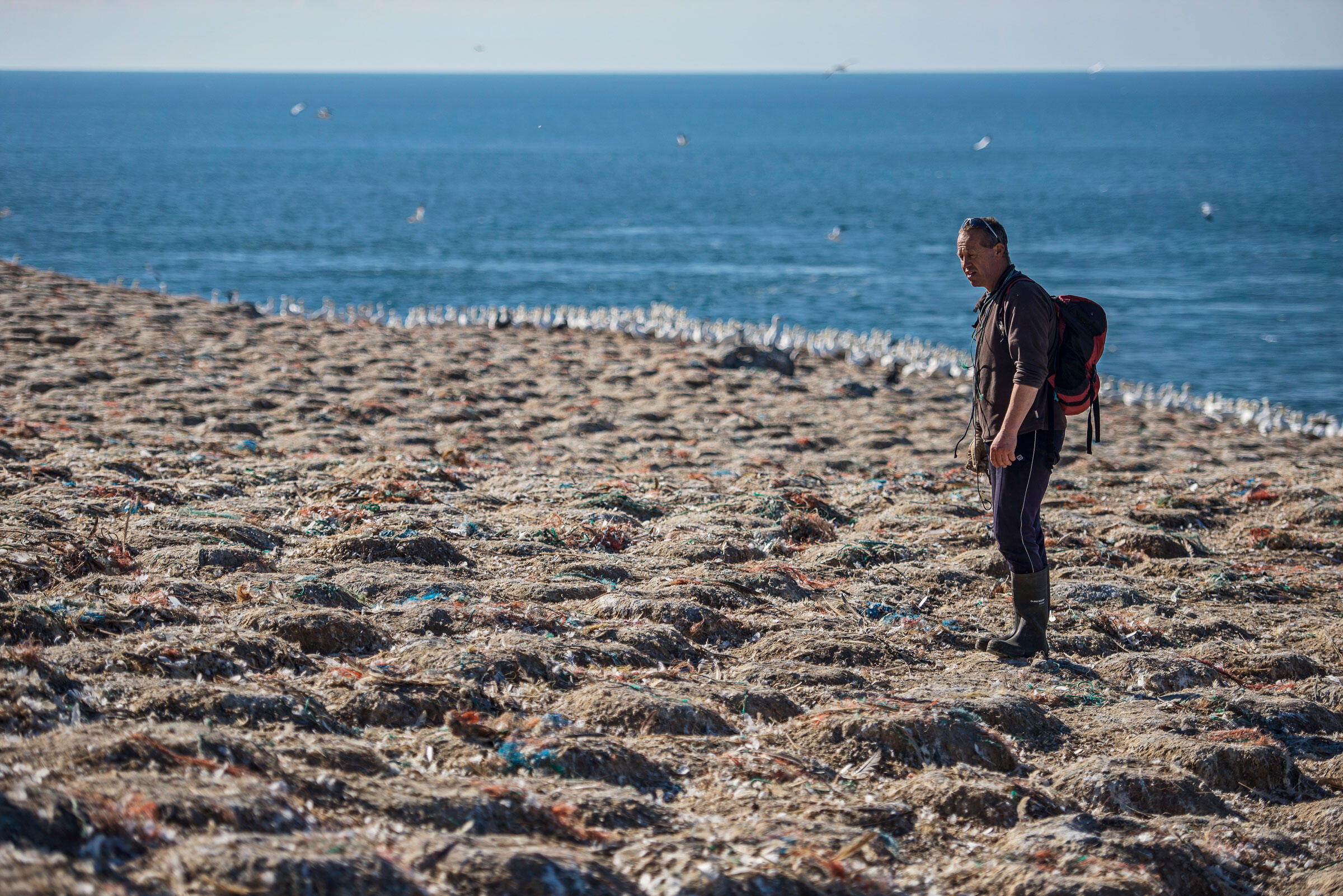 Tim Brooke, a skipper with wildlife tourism company Venture Jet, has seen the plastic problem on Grassholm worsen since his first visit 25 years ago. Sam Hobson