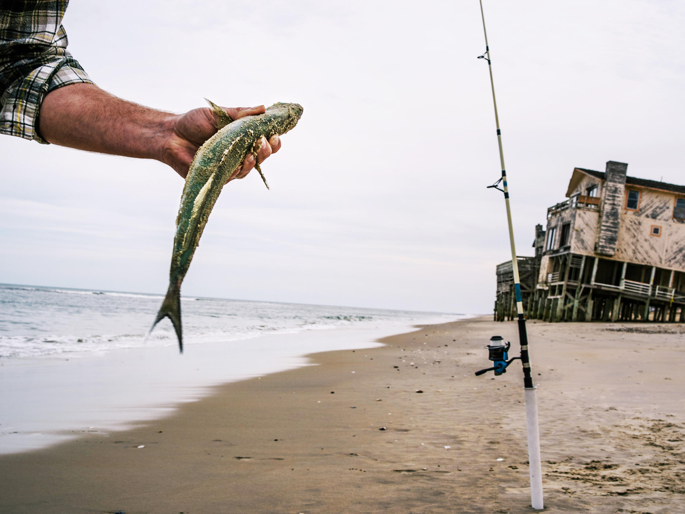 Brian Winnett, left, hauls in a blue fish near a stretch of condemned homes on the beach in Nags Head to fish on the Outer Banks, NC. Greg Kahn