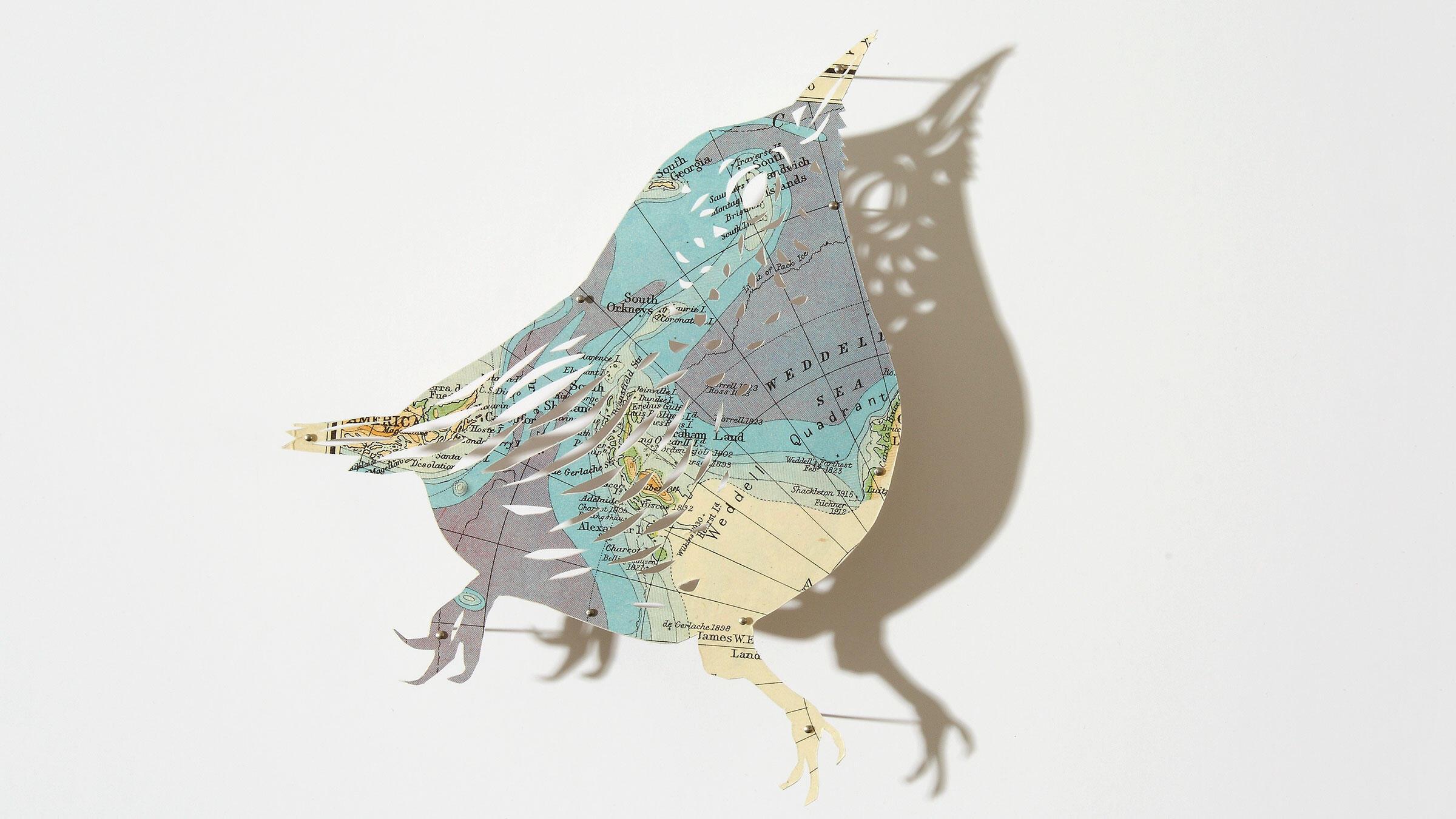 Wren. Paper sculpture: Claire Brewster