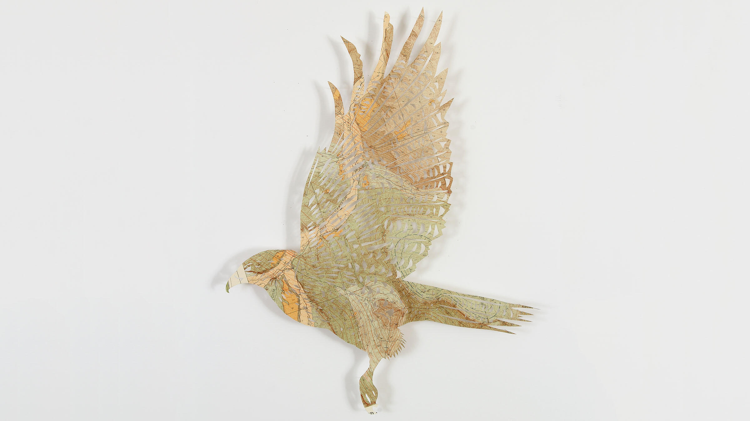 Red-tailed Hawk. Paper sculpture: Claire Brewster