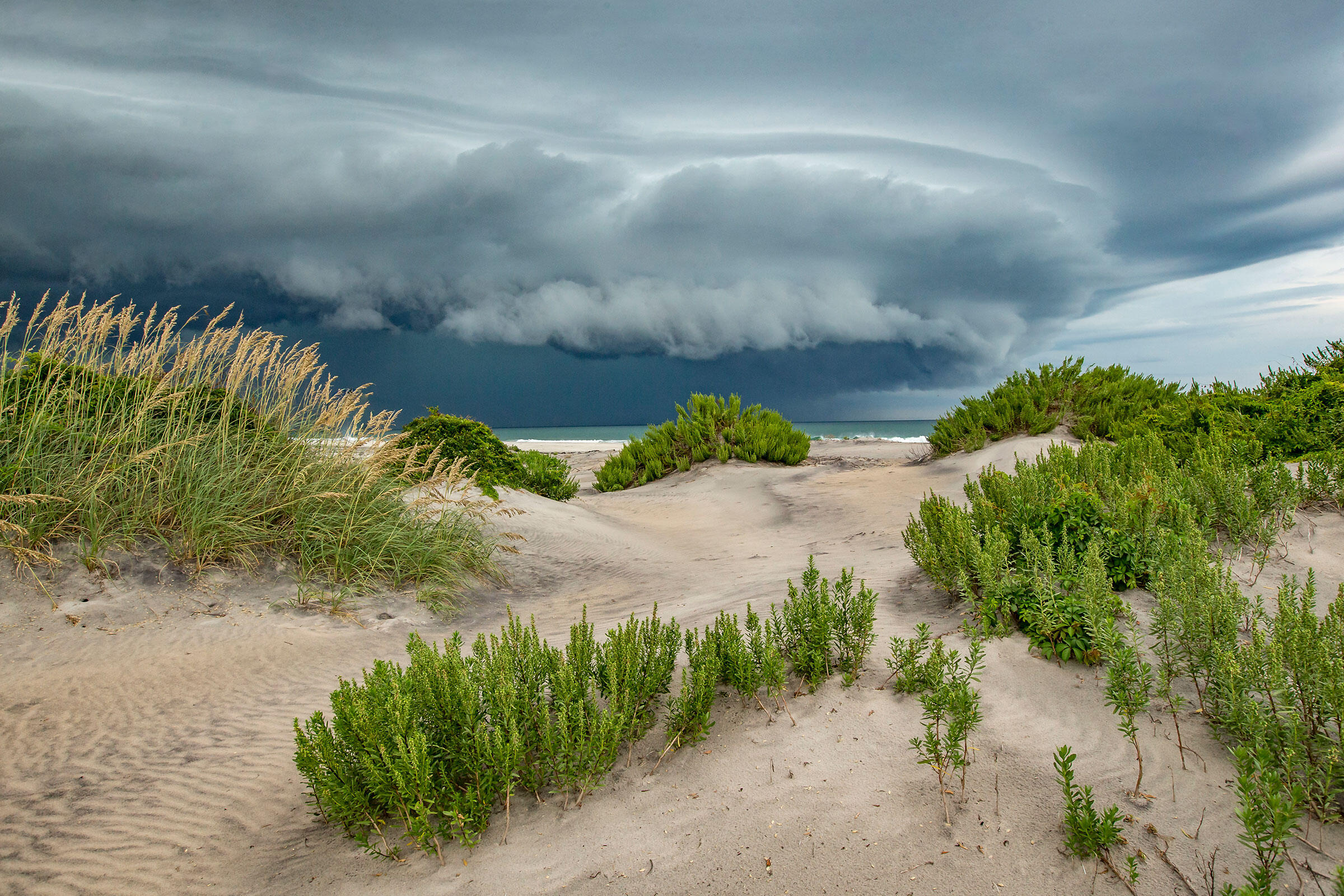 Pea Island is one of nine coastal refuges in North Carolina that have been lumped together in a complex, increasing demand on staff to manage more and more land. Mark Buckler