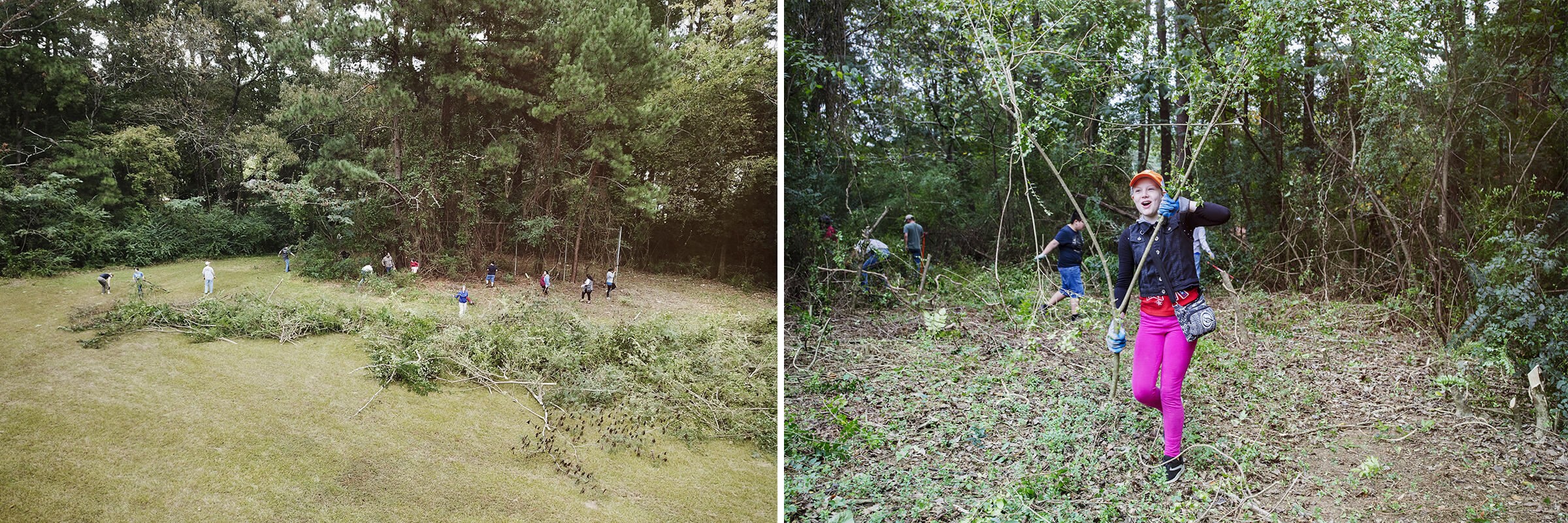 From left: Volunteers clear out Chinese privet, an invasive hedge, from the north side of campus during an event last fall; a student drags felled plants from the trail. Mike Fernandez/Audubon