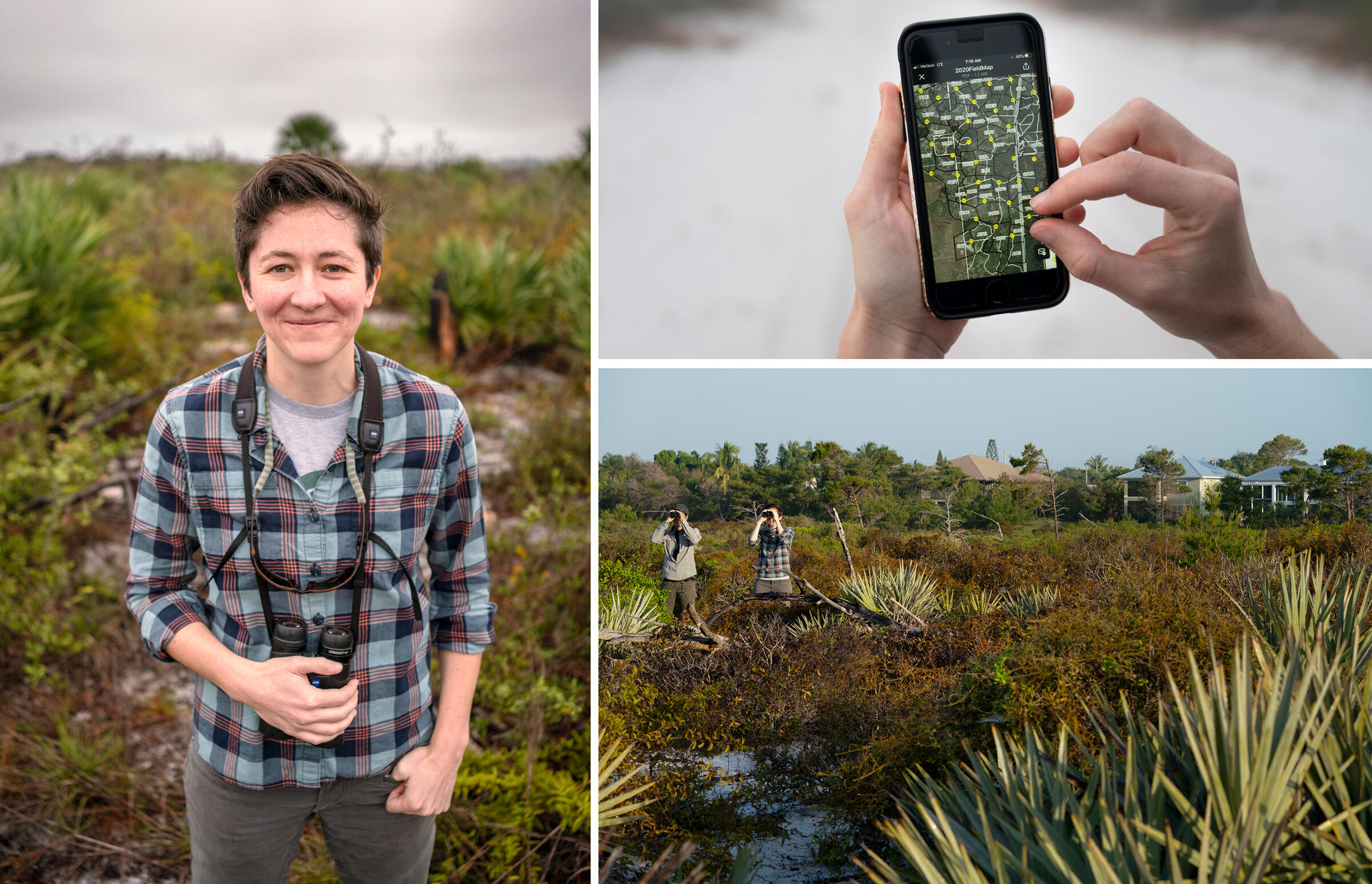 A portrait of Sarah Fitzpatrick, left. While using GPS data Fitzpatrick and Lehr watch for jays at Jonathan Dickinson State Park. Photos: Carlton Ward Jr.