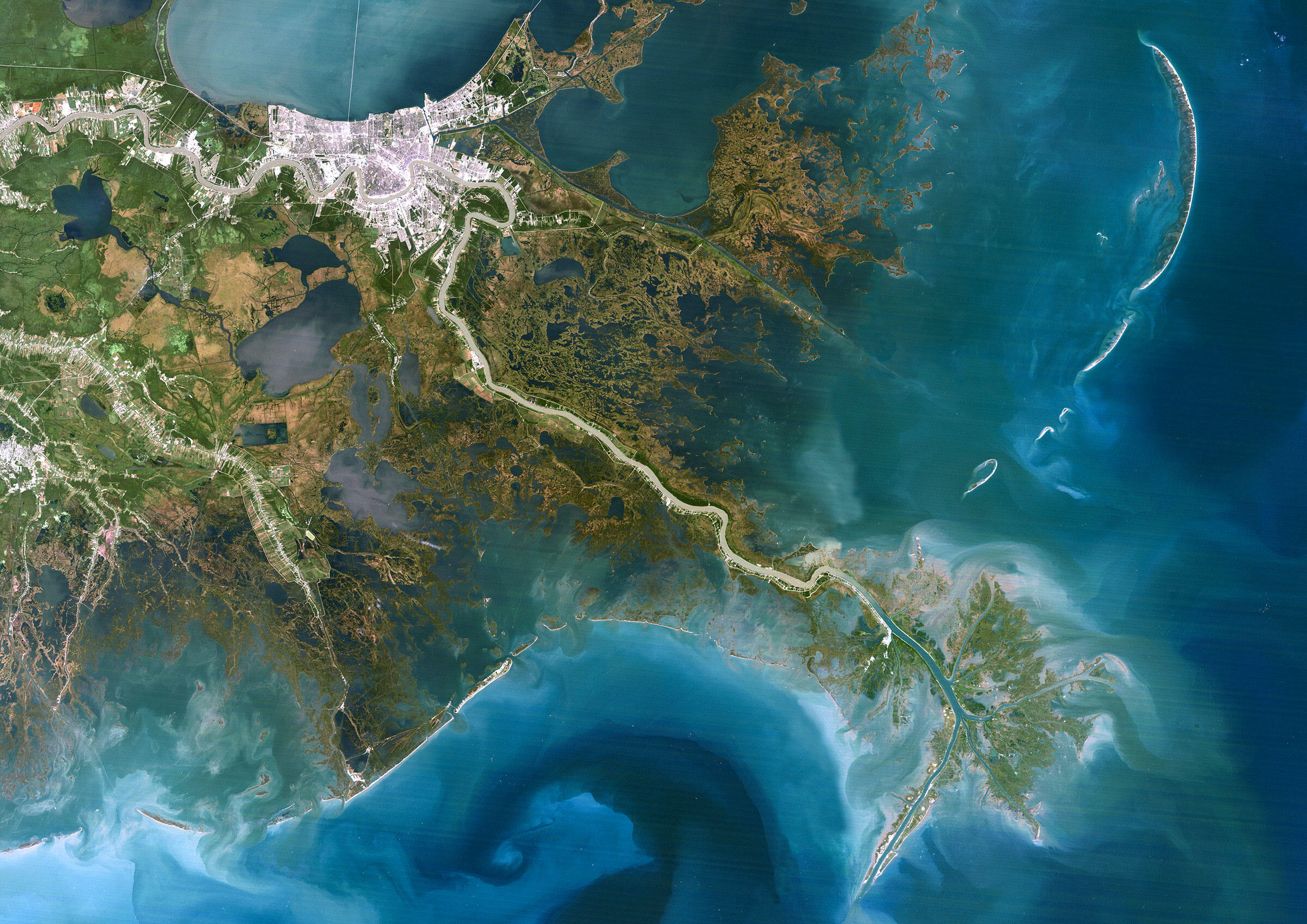 Satellite image of the Mississippi River Delta. Universal Images Group North America LLC/Alamy