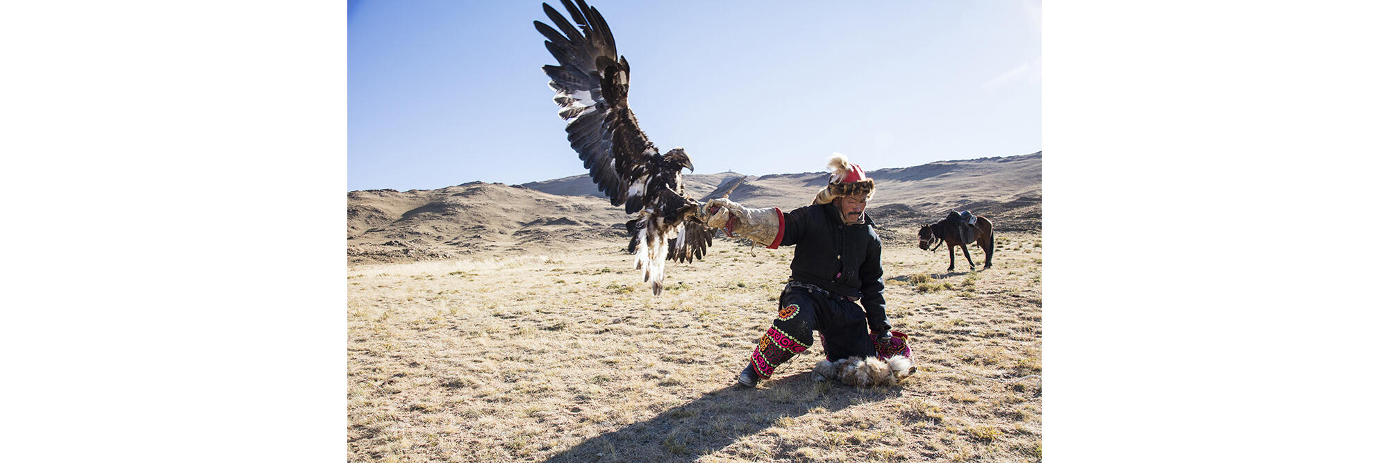 Dalaikhan Itale, an eagle hunter for more than 35 years, continues to work to perfect his calls and landing techniques. Cedric Angeles/Intersection Photos
