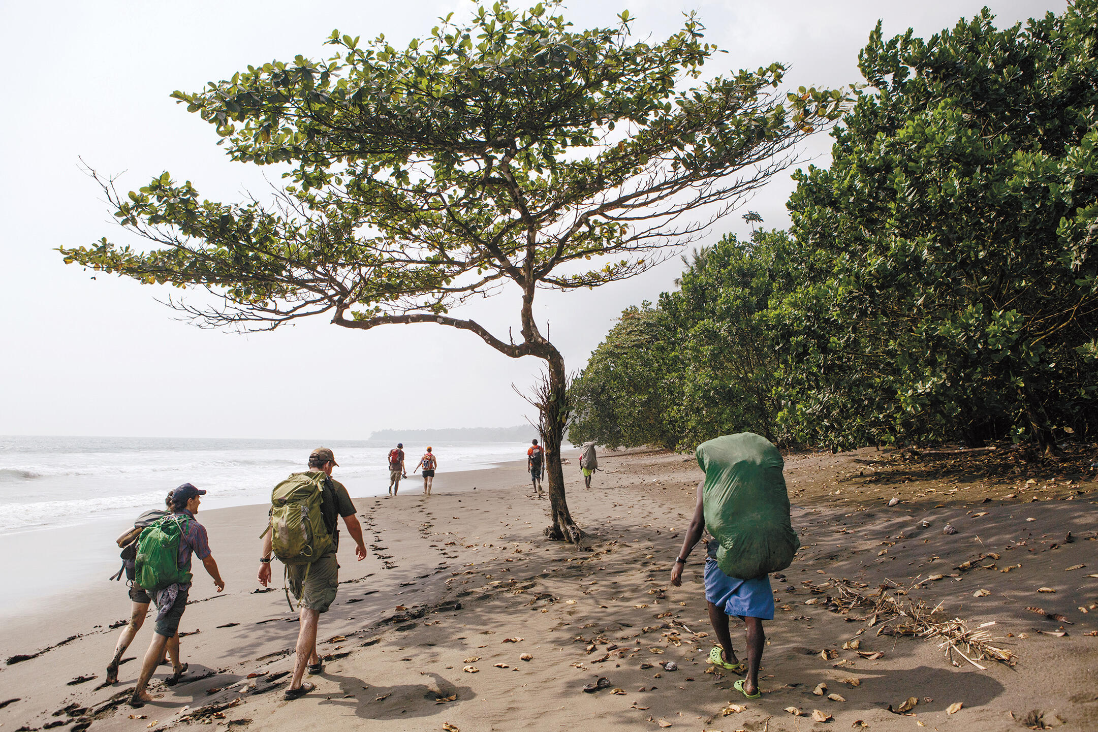 Expedition members walk to Moraka field camp on the first day of the trip to the caldera, spotting numerous birds, including Western Reef-Herons and Pied Crows. Tristan Spinski