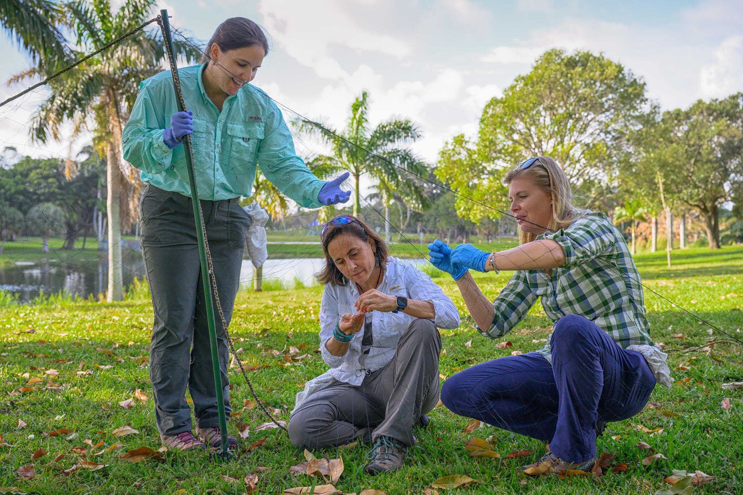 Two women sit and crouch on a lawn and one stands with a hand reaching out against the backdrop of a pond and palm trees. With surgical gloves on their hands, they are all concentrated on fiddling with a fine net attached to a short pole.
