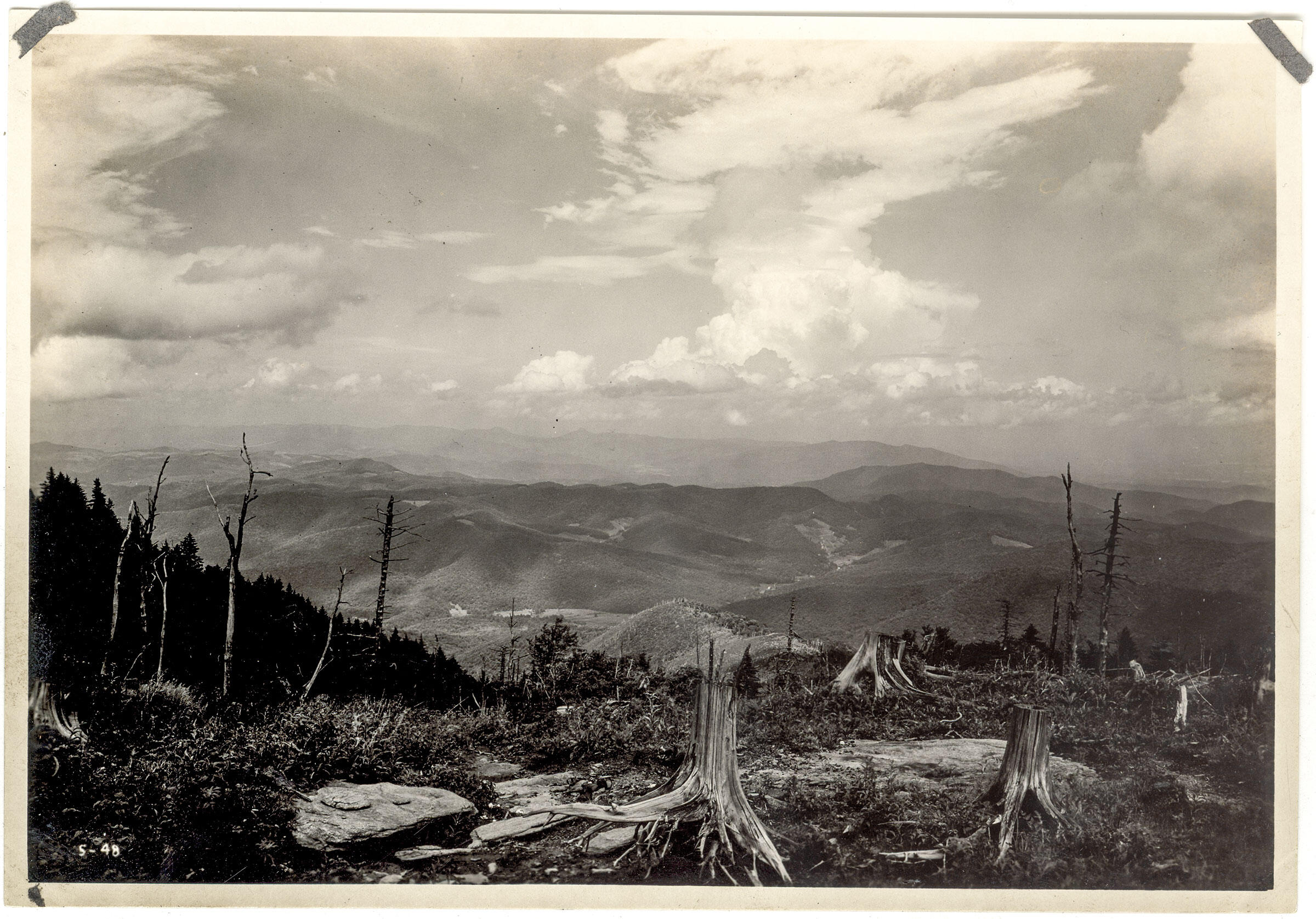 Clear-cutting in the Smoky Mountains. George Masa/Hunter Library, Western Carolina University