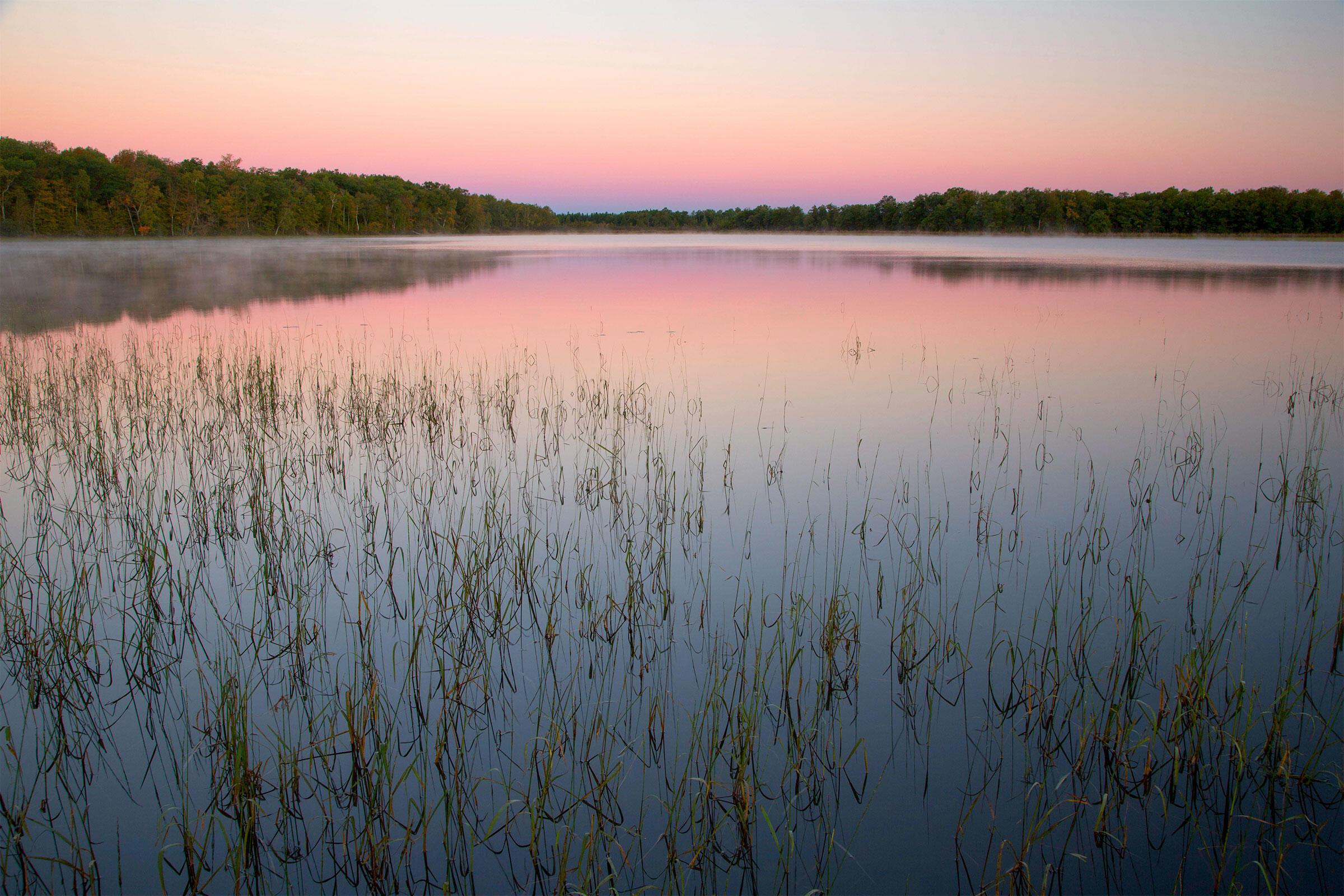 Rice Lake National Wildlife Refuge, Minnesota. George Ostertag/Alamy