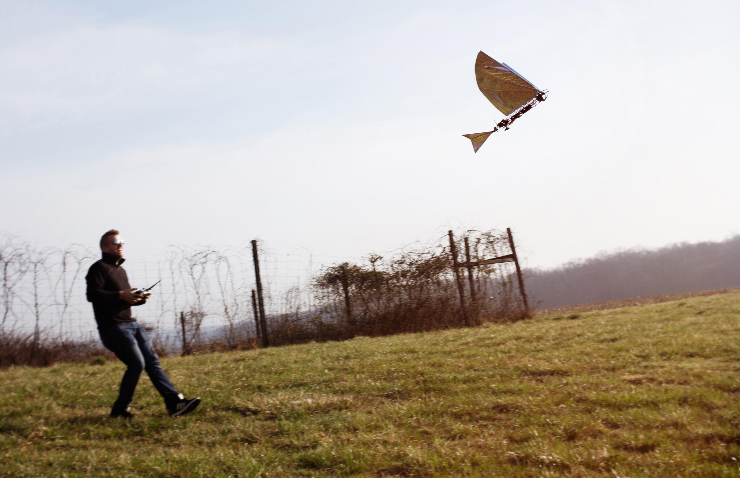 Robo Raven III airborn launched by Luke Roberts, PhD students in the Department of Mechanical Engineering at the University of Maryland, College Park. Mike Fernandez/Audubon