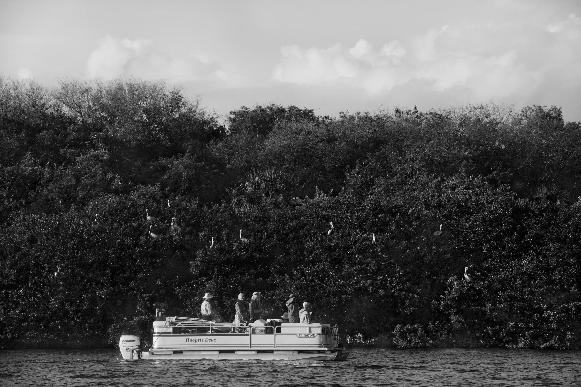 A photography tour floats by the sanctuary's rookeries. Melissa Lyttle