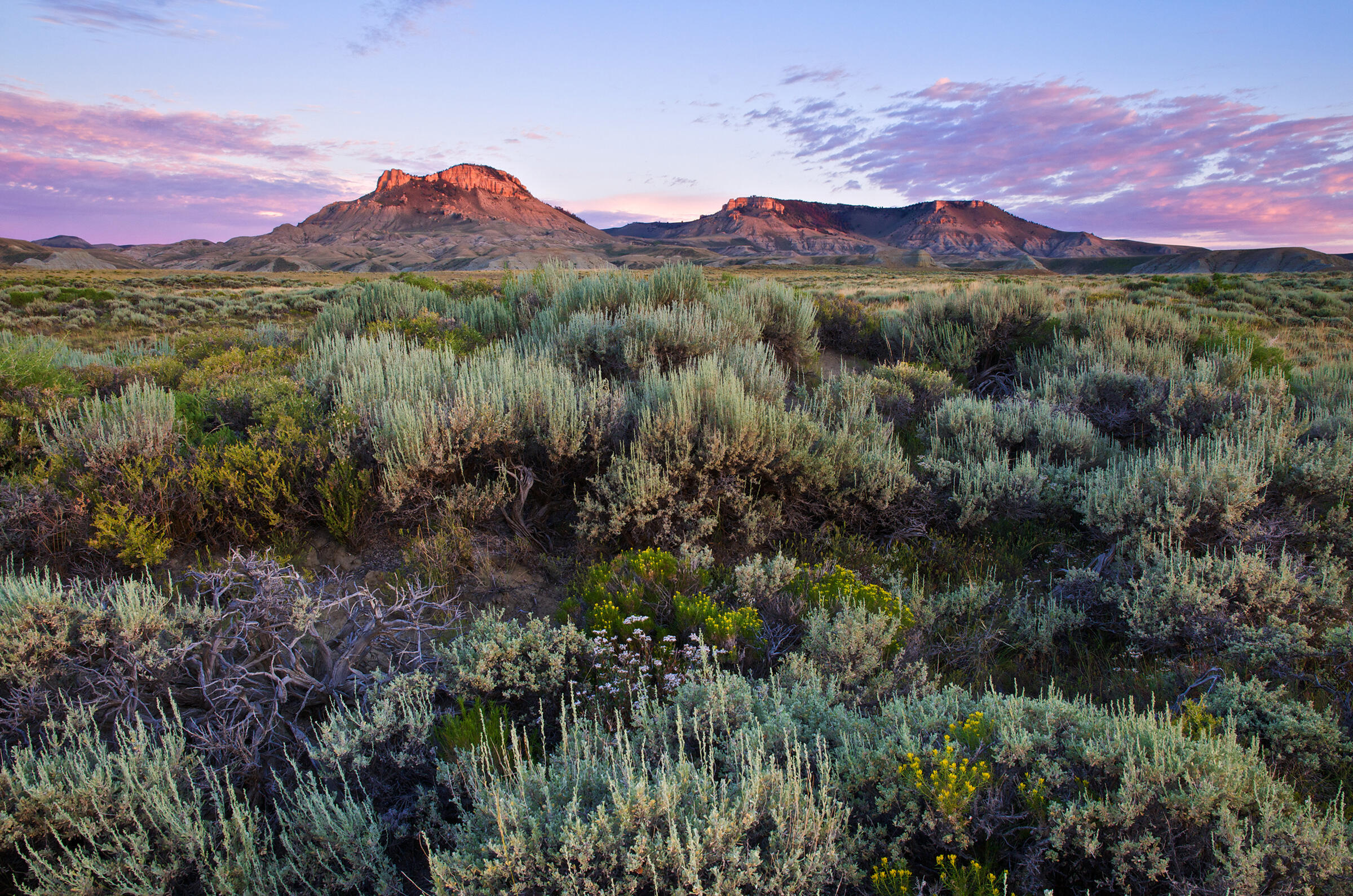 Sunrise lights the buttes of the Red Desert. This area is typical of the sagebrush ecosystem and important for many endemic species. Oregon Buttes Wilderness Study Area, Wyoming. Dave Showalter