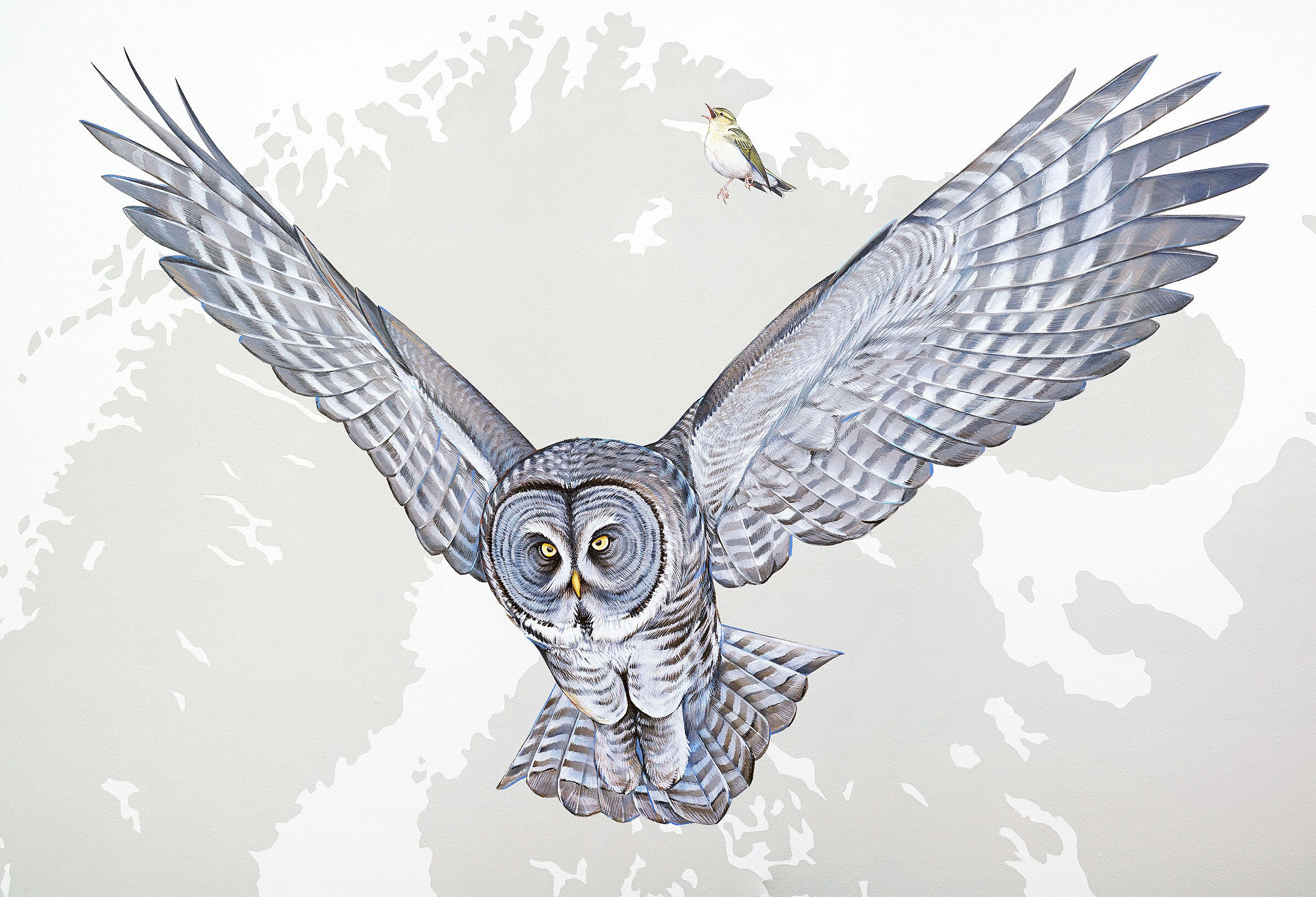 """Great Gray Owl and Wood Warbler. Courtesy of <a href=""""http://inkdwell.com/"""">Ink Dwell</a>"""