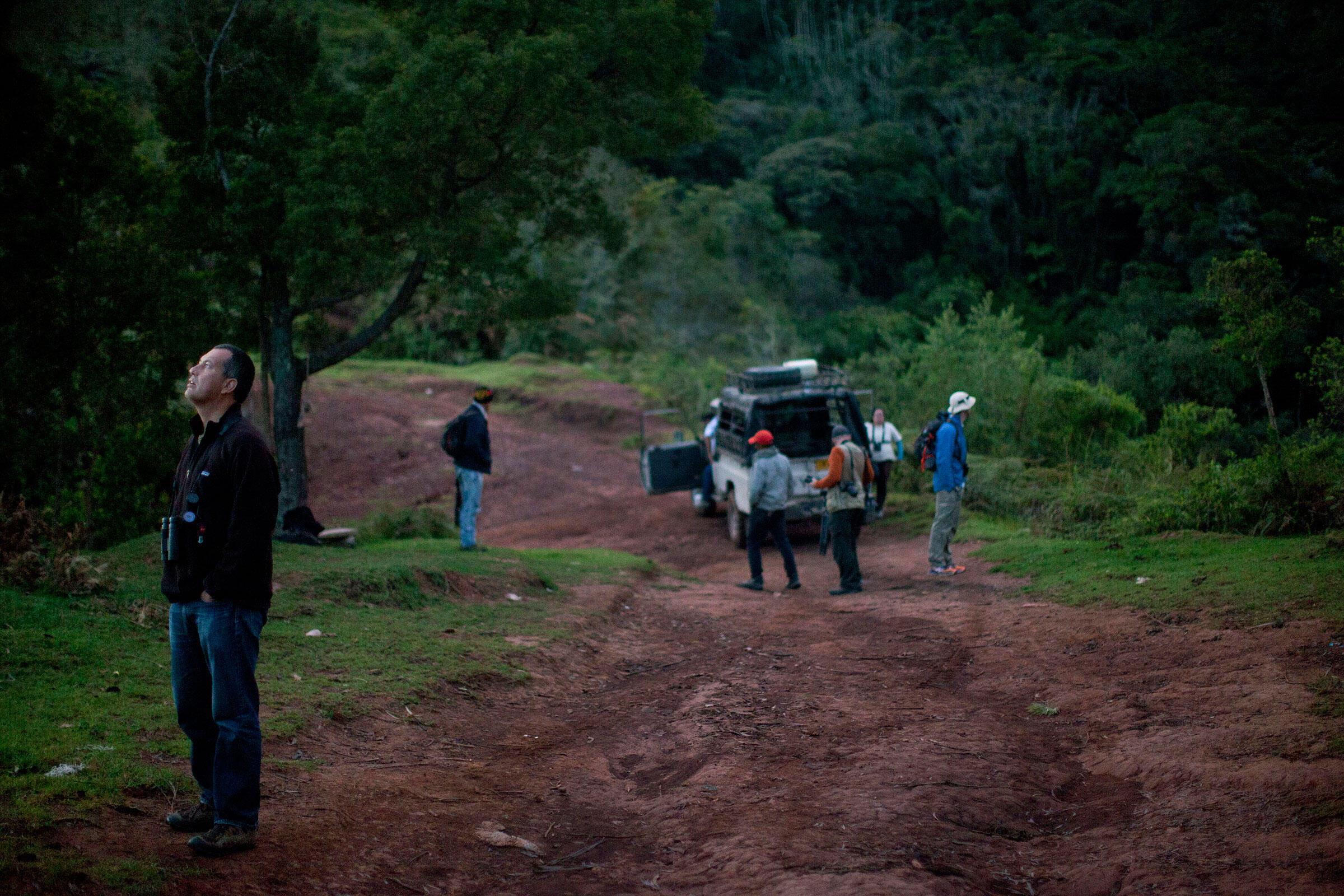 Avistaje de aves en la madrugada desde La Pechichona en las montañas Perijá. Carlos Villalón