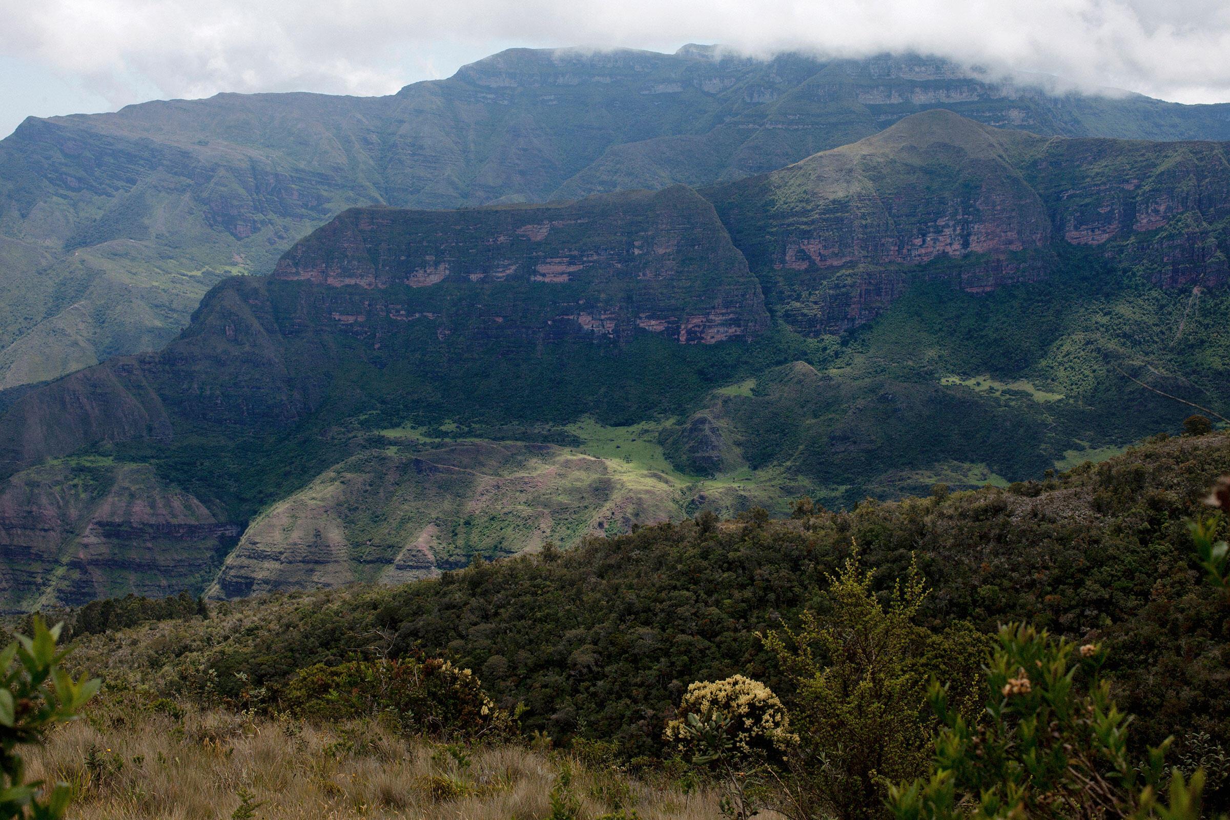 Una vista parcial del Cerro Pintado desde el páramo de la Serranía de Perijá. Carlos Villalón