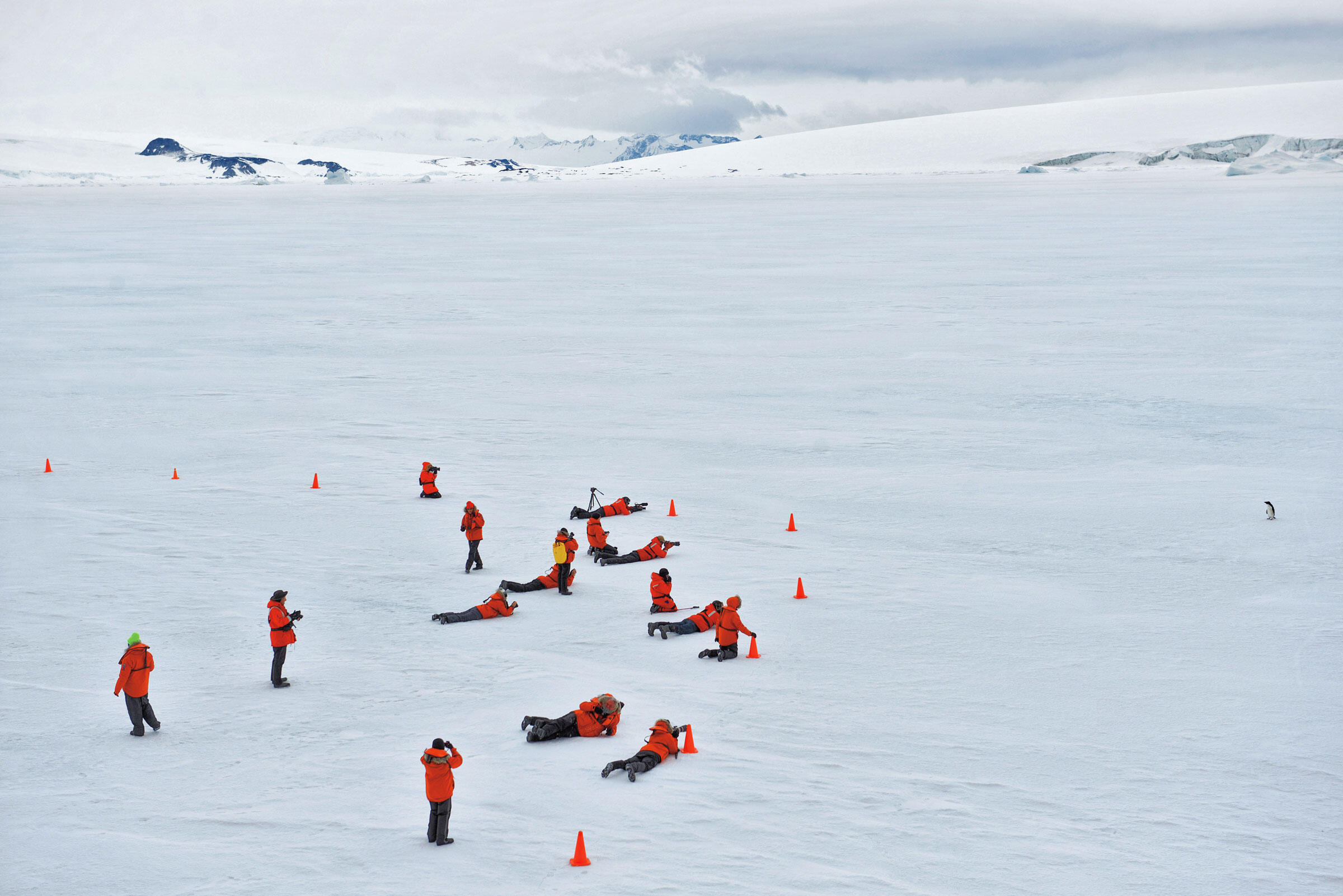 Ecotourists set up behind orange safety cones to photograph a lone Adélie Penguin waddling on the ice in the Weddell Sea, Antarctic Sound. Antarctica. Sisse Brimberg & Cotton Coulson/National Geographic