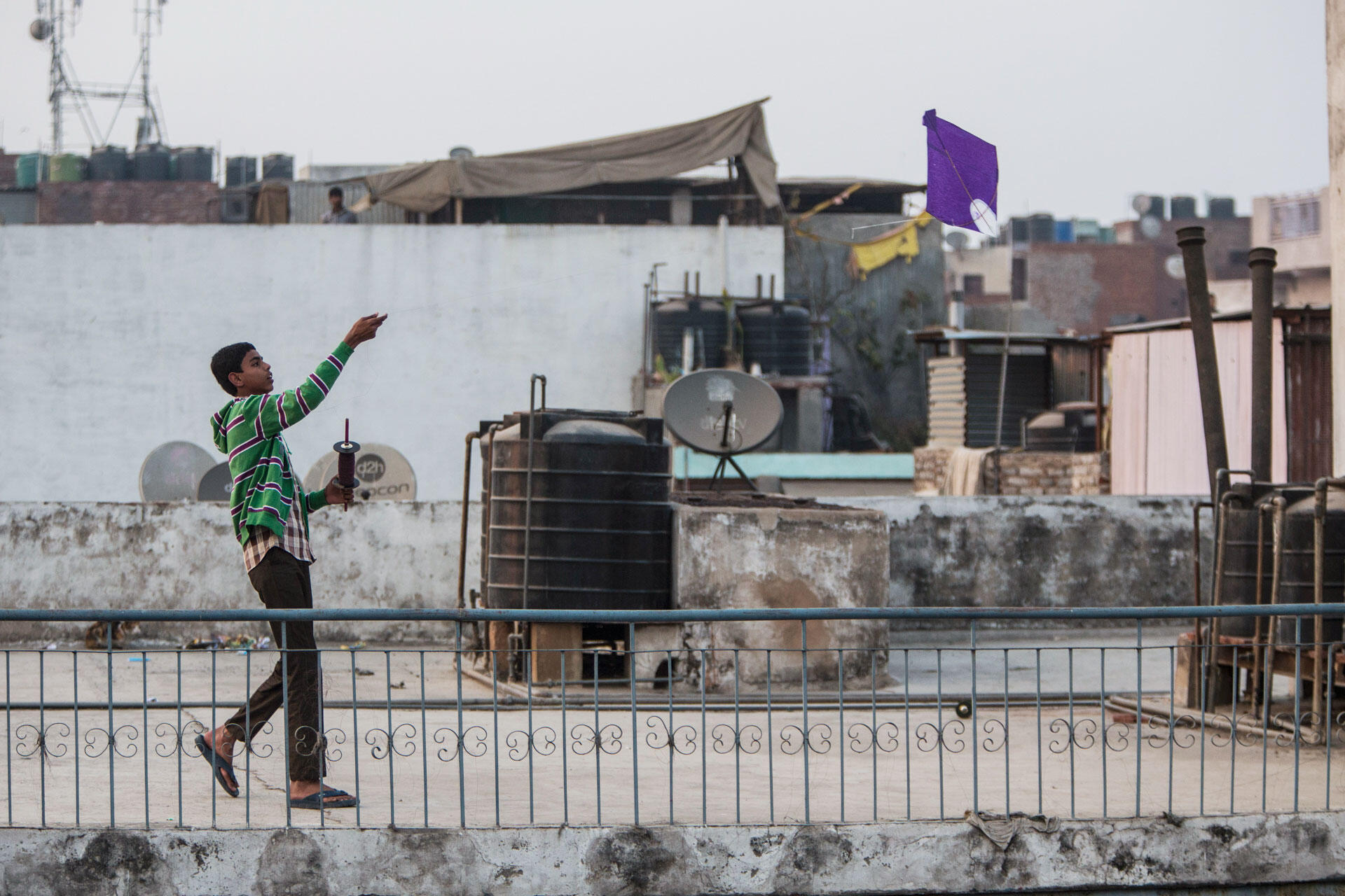 A young man flies a paper kite. The popular pastime can have fatal consequences for the avian kites, which can become tangled up in or cut by the string. Sharp threads have fatally injured humans, too. Luke Massey